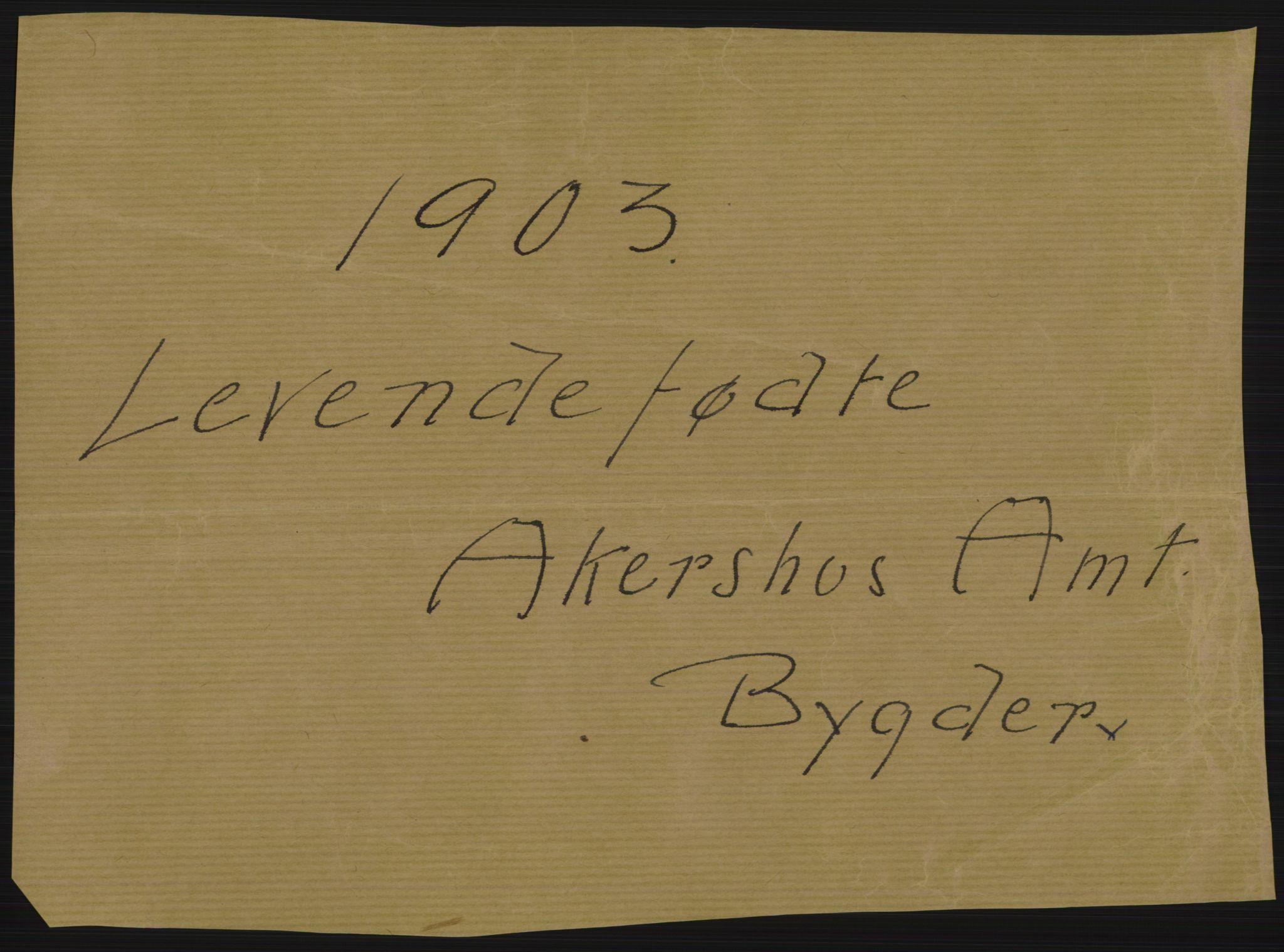 RA, Statistisk sentralbyrå, Sosiodemografiske emner, Befolkning, D/Df/Dfa/Dfaa/L0002: Akershus amt: Fødte, gifte, døde, 1903