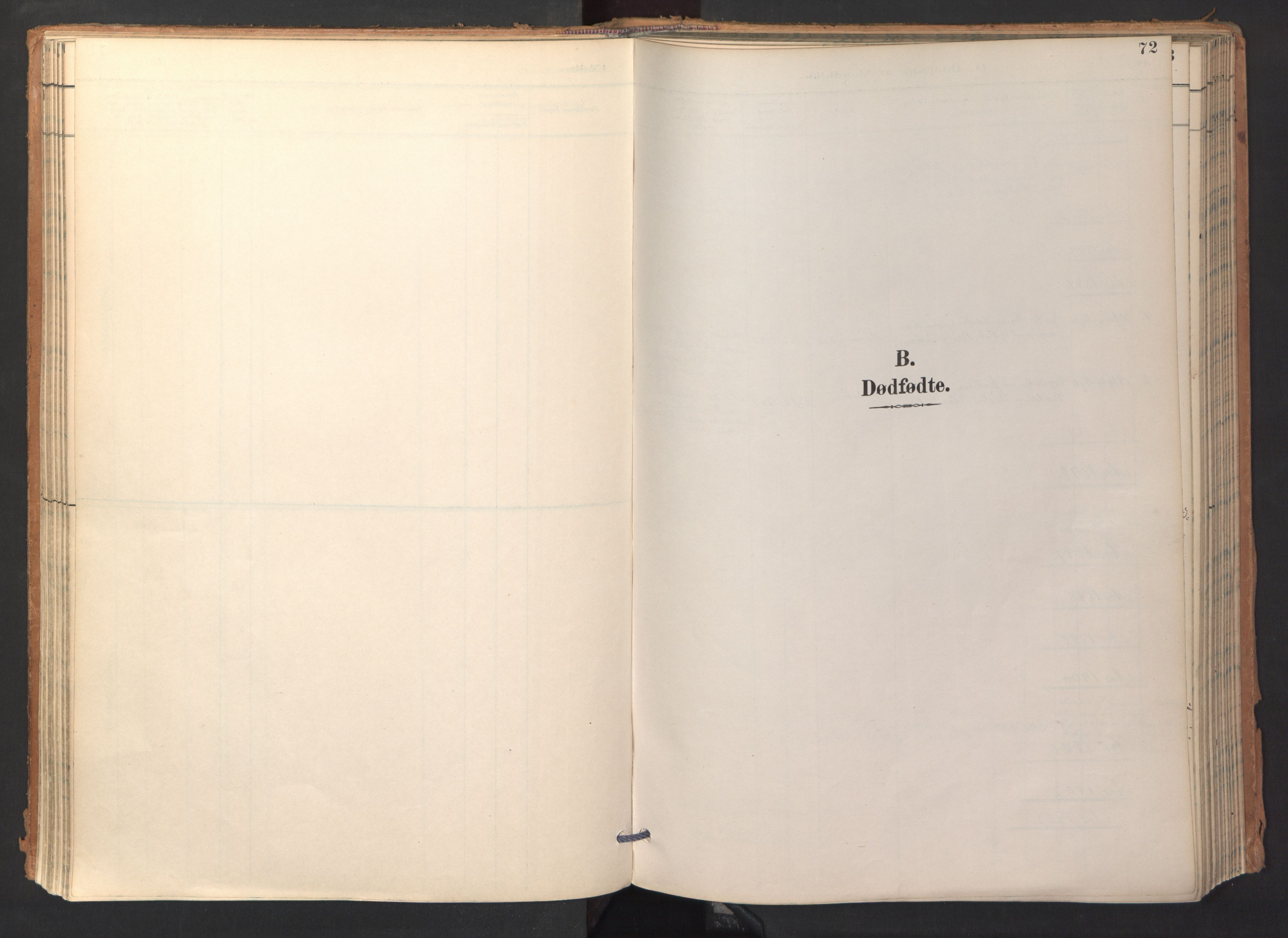 SAT, Ministerialprotokoller, klokkerbøker og fødselsregistre - Sør-Trøndelag, 688/L1025: Ministerialbok nr. 688A02, 1891-1909, s. 72