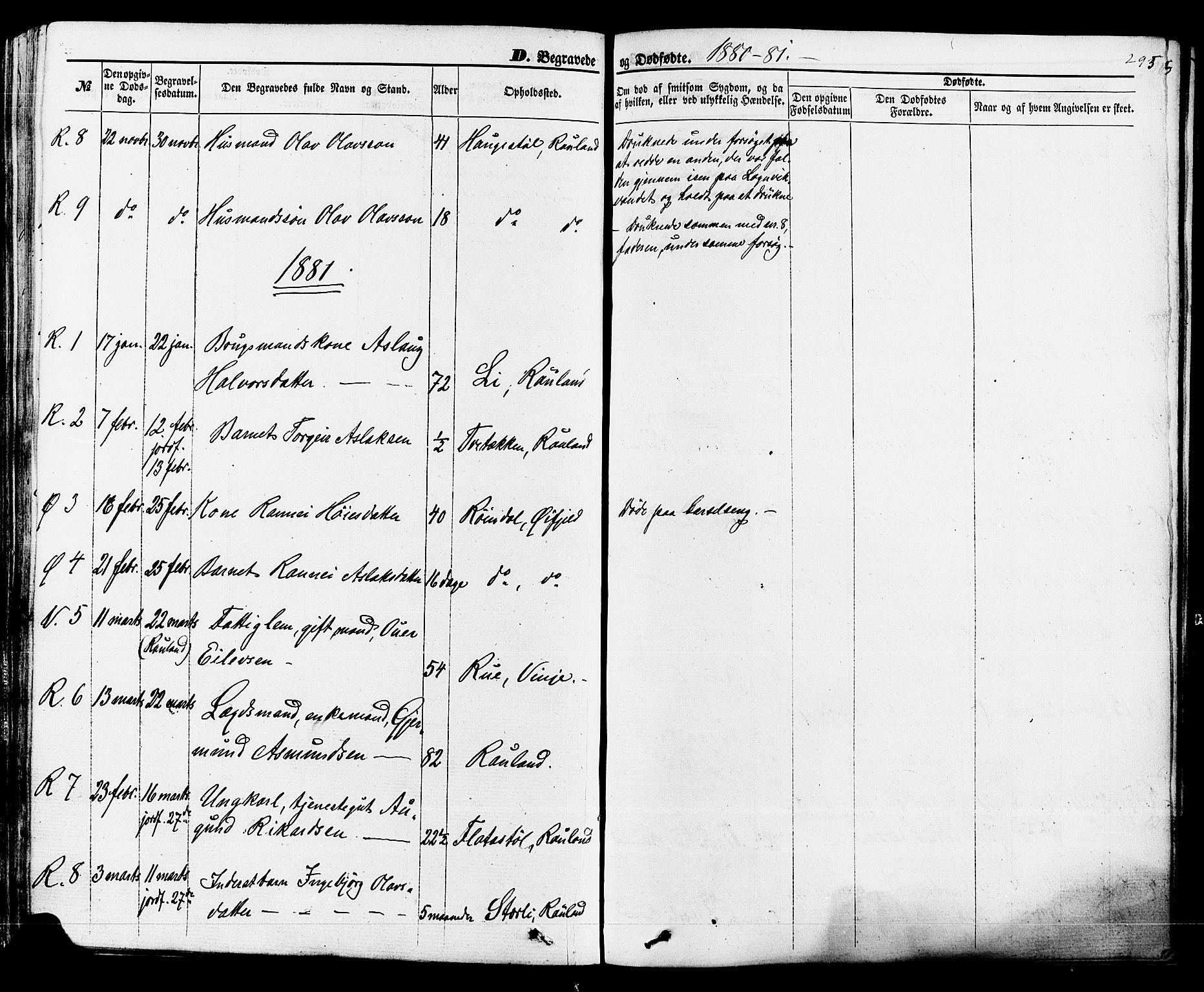 SAKO, Rauland kirkebøker, F/Fa/L0003: Ministerialbok nr. 3, 1859-1886, s. 295