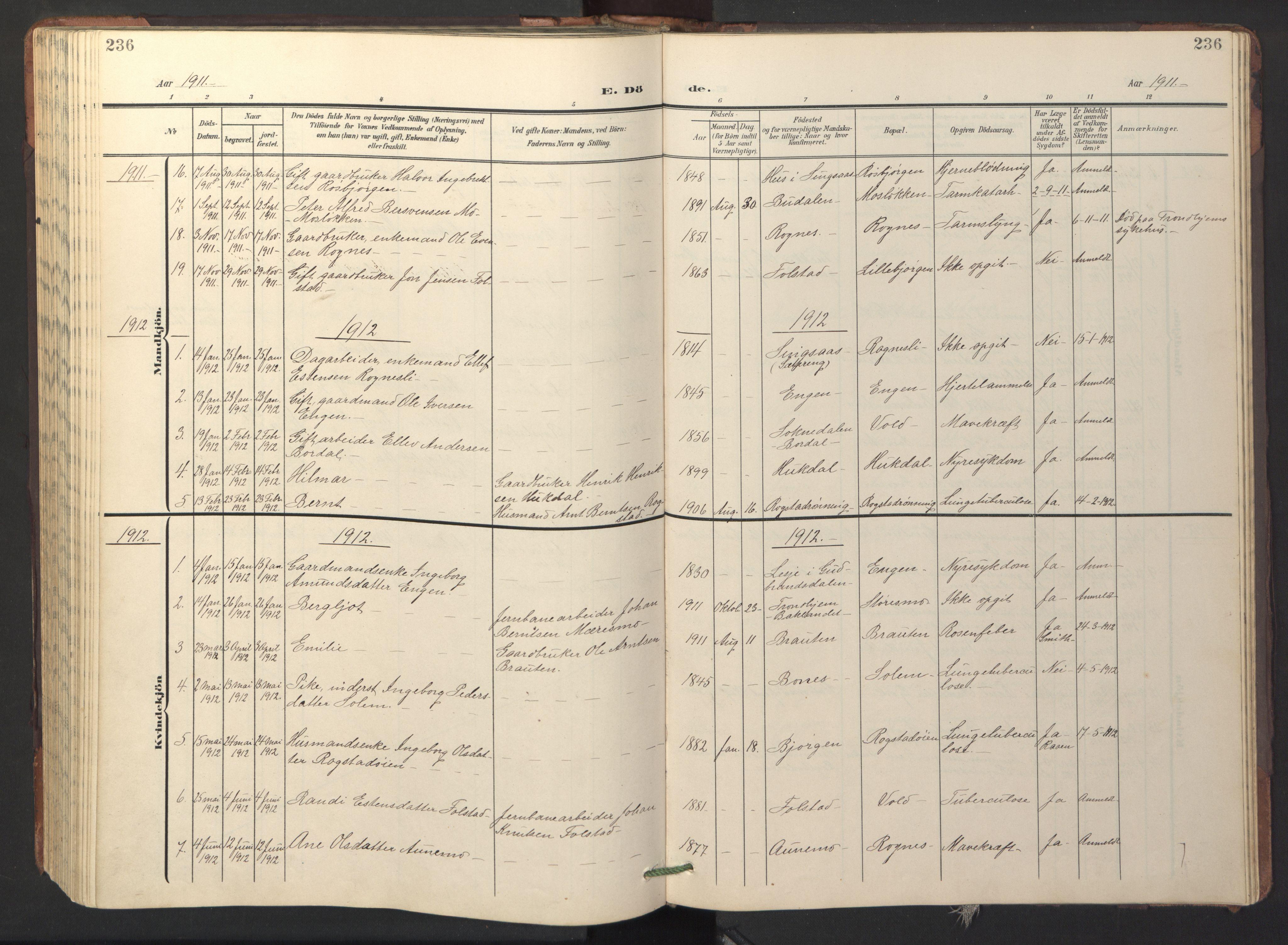 SAT, Ministerialprotokoller, klokkerbøker og fødselsregistre - Sør-Trøndelag, 687/L1019: Klokkerbok nr. 687C03, 1904-1931, s. 236