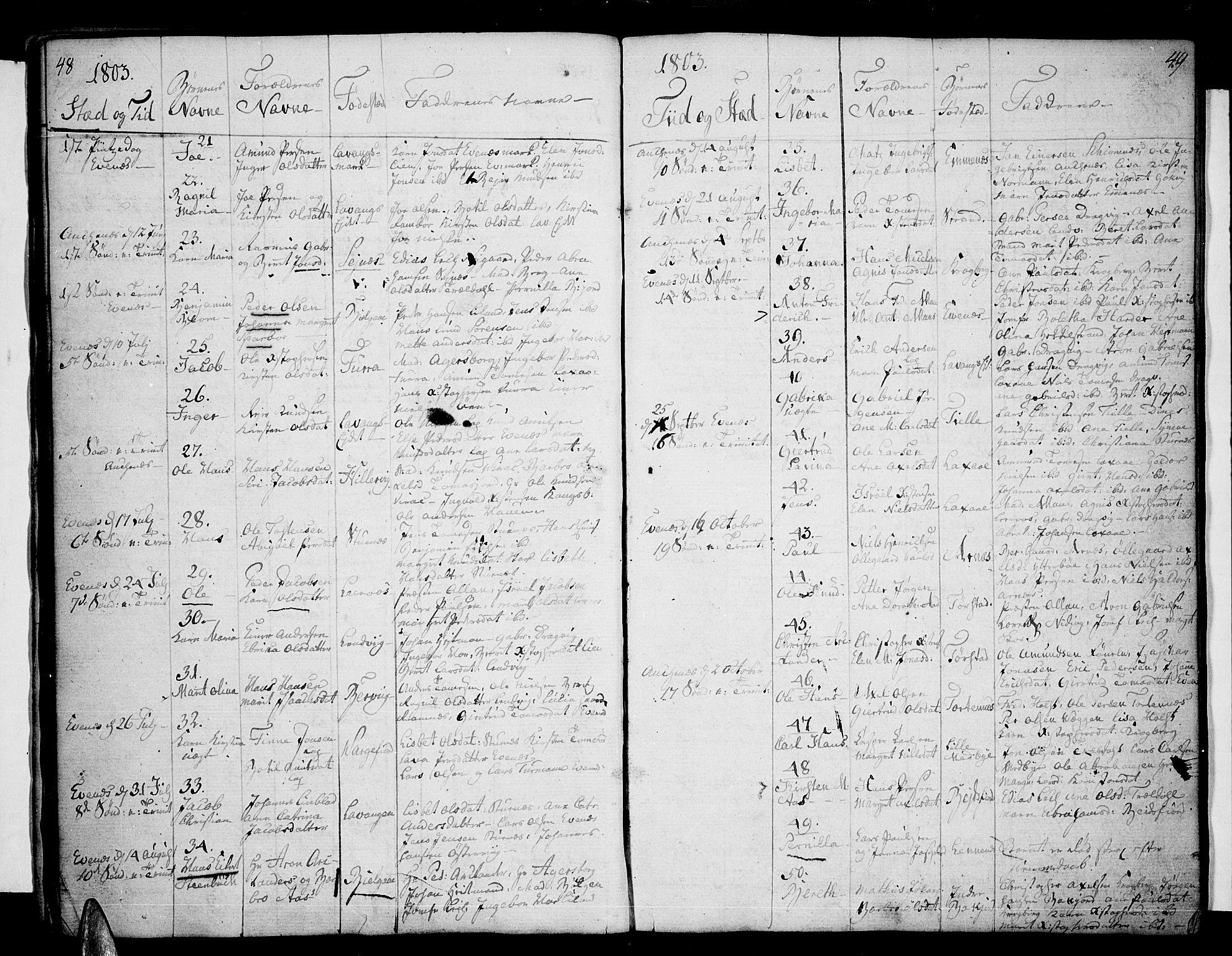 SAT, Ministerialprotokoller, klokkerbøker og fødselsregistre - Nordland, 863/L0893: Ministerialbok nr. 863A05, 1794-1821, s. 48-49