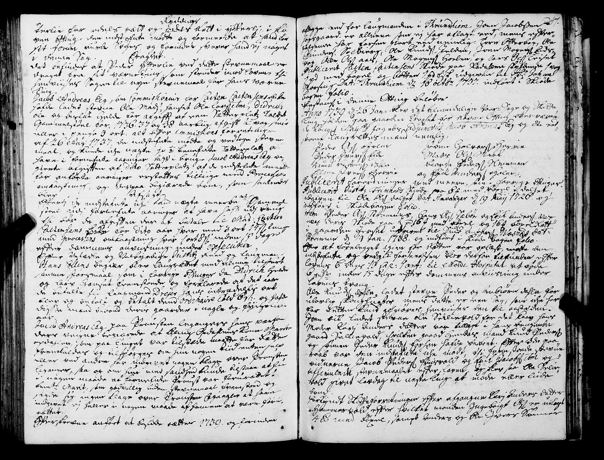 SAT, Romsdal sorenskriveri, 1/1A/L0011: Tingbok, 1732-1740, s. 246b-247a