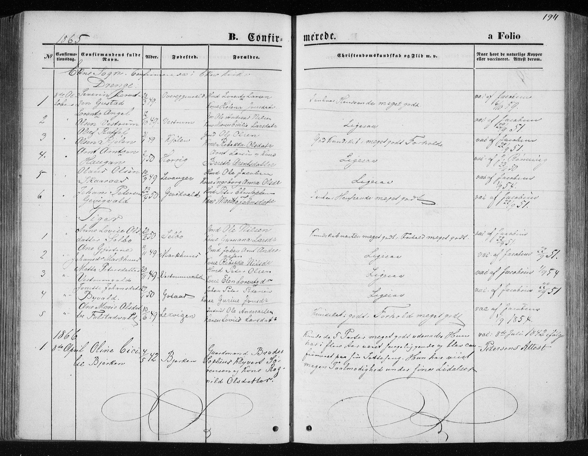 SAT, Ministerialprotokoller, klokkerbøker og fødselsregistre - Nord-Trøndelag, 717/L0157: Ministerialbok nr. 717A08 /1, 1863-1877, s. 194