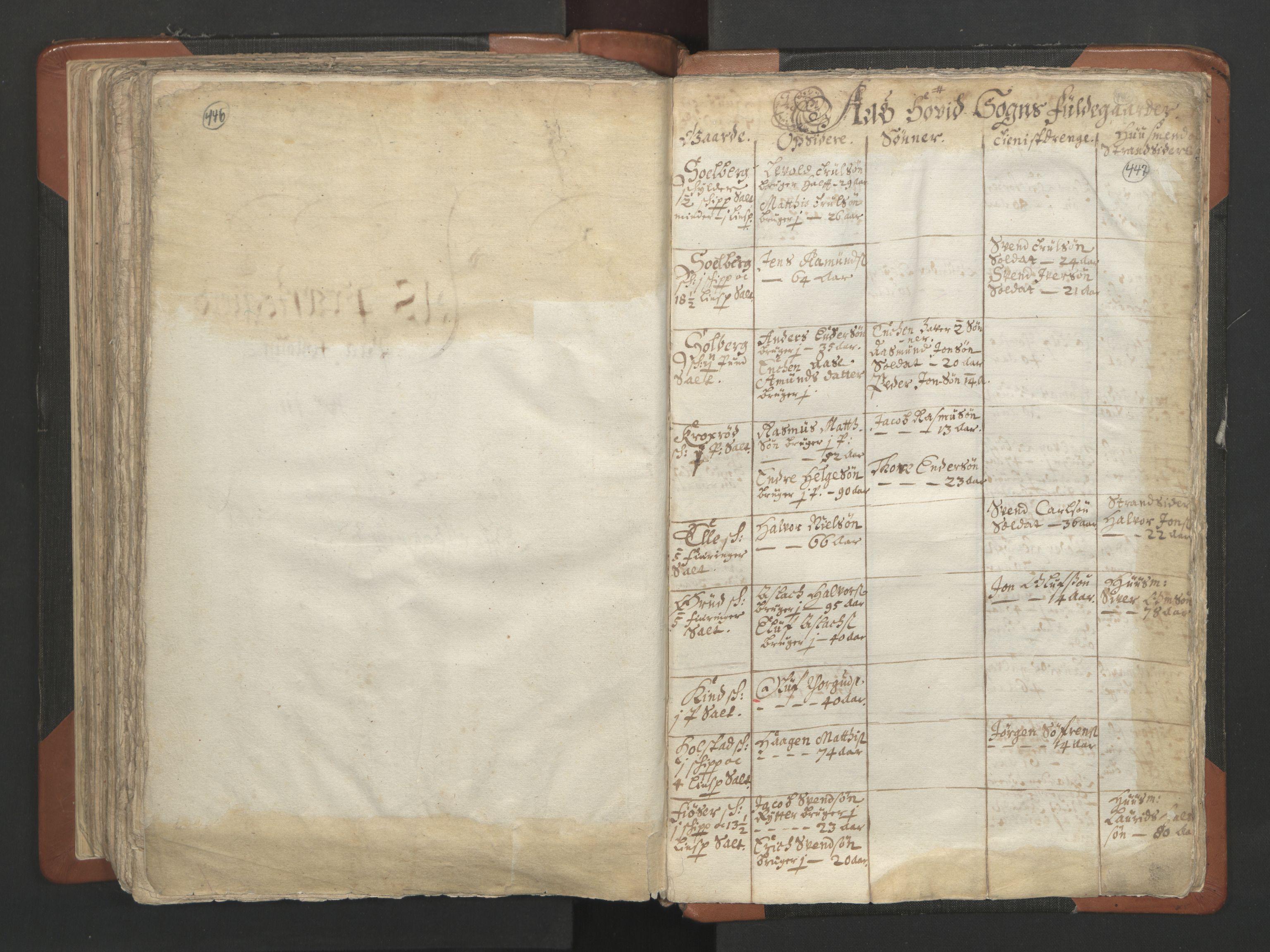 RA, Sogneprestenes manntall 1664-1666, nr. 2: Øvre Borgesyssel prosti, 1664-1666, s. 446-447