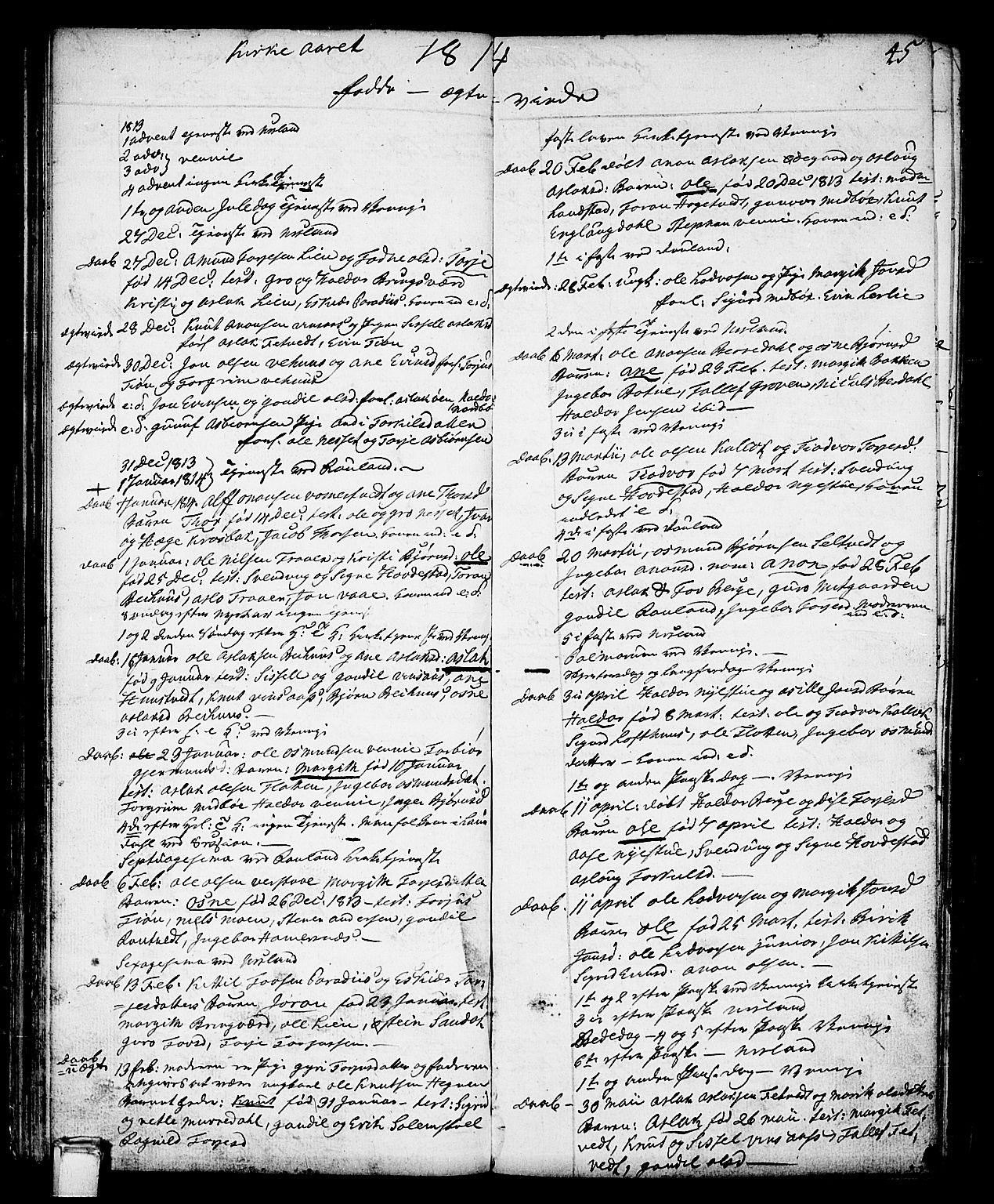 SAKO, Vinje kirkebøker, F/Fa/L0002: Ministerialbok nr. I 2, 1767-1814, s. 45