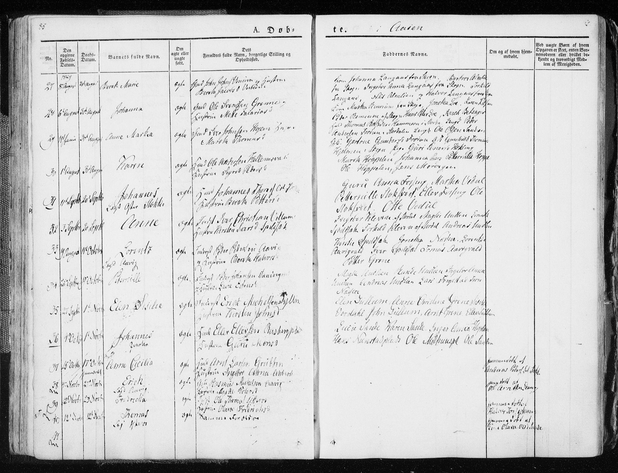 SAT, Ministerialprotokoller, klokkerbøker og fødselsregistre - Nord-Trøndelag, 713/L0114: Ministerialbok nr. 713A05, 1827-1839, s. 85