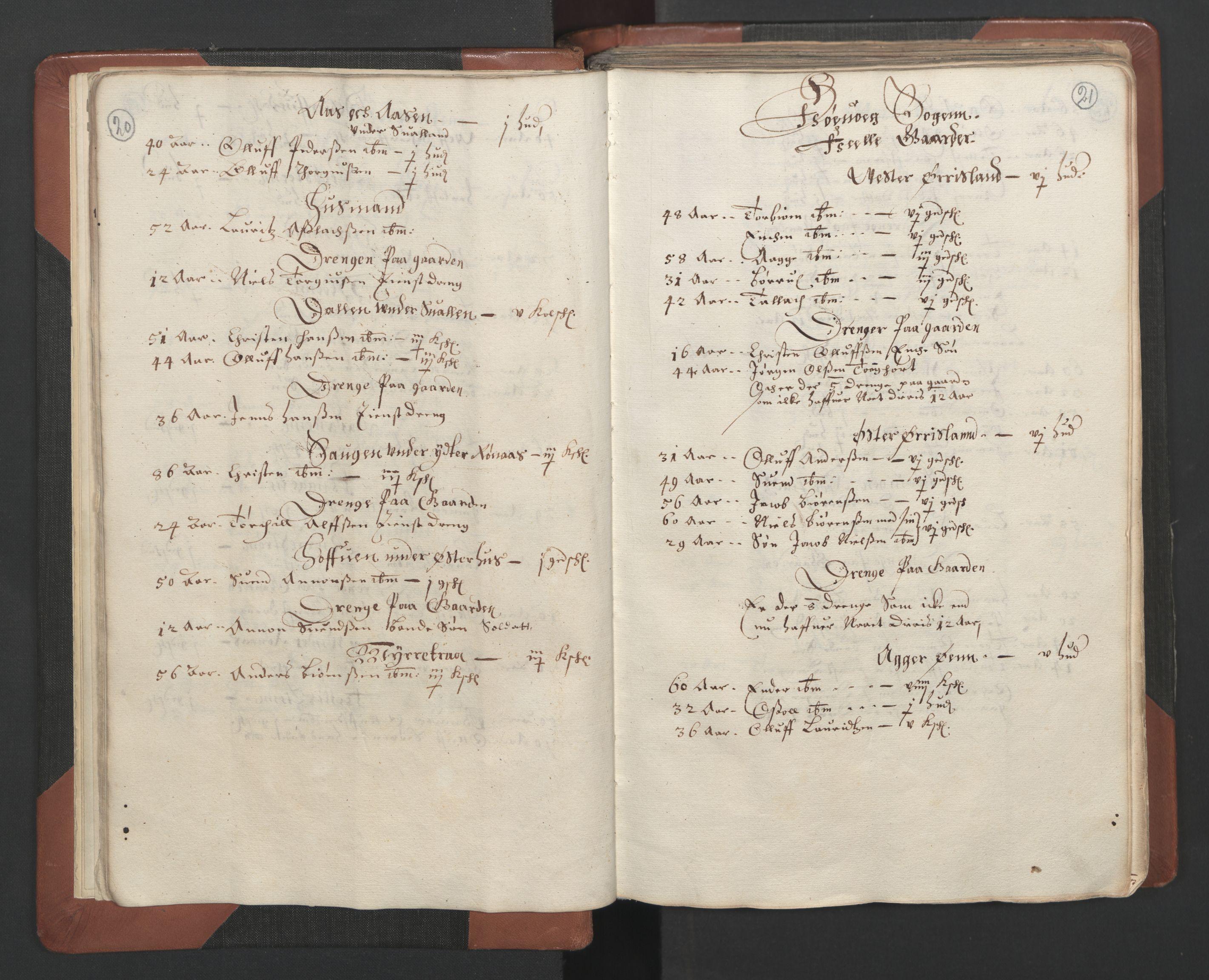 RA, Fogdenes og sorenskrivernes manntall 1664-1666, nr. 7: Nedenes fogderi, 1664-1666, s. 20-21