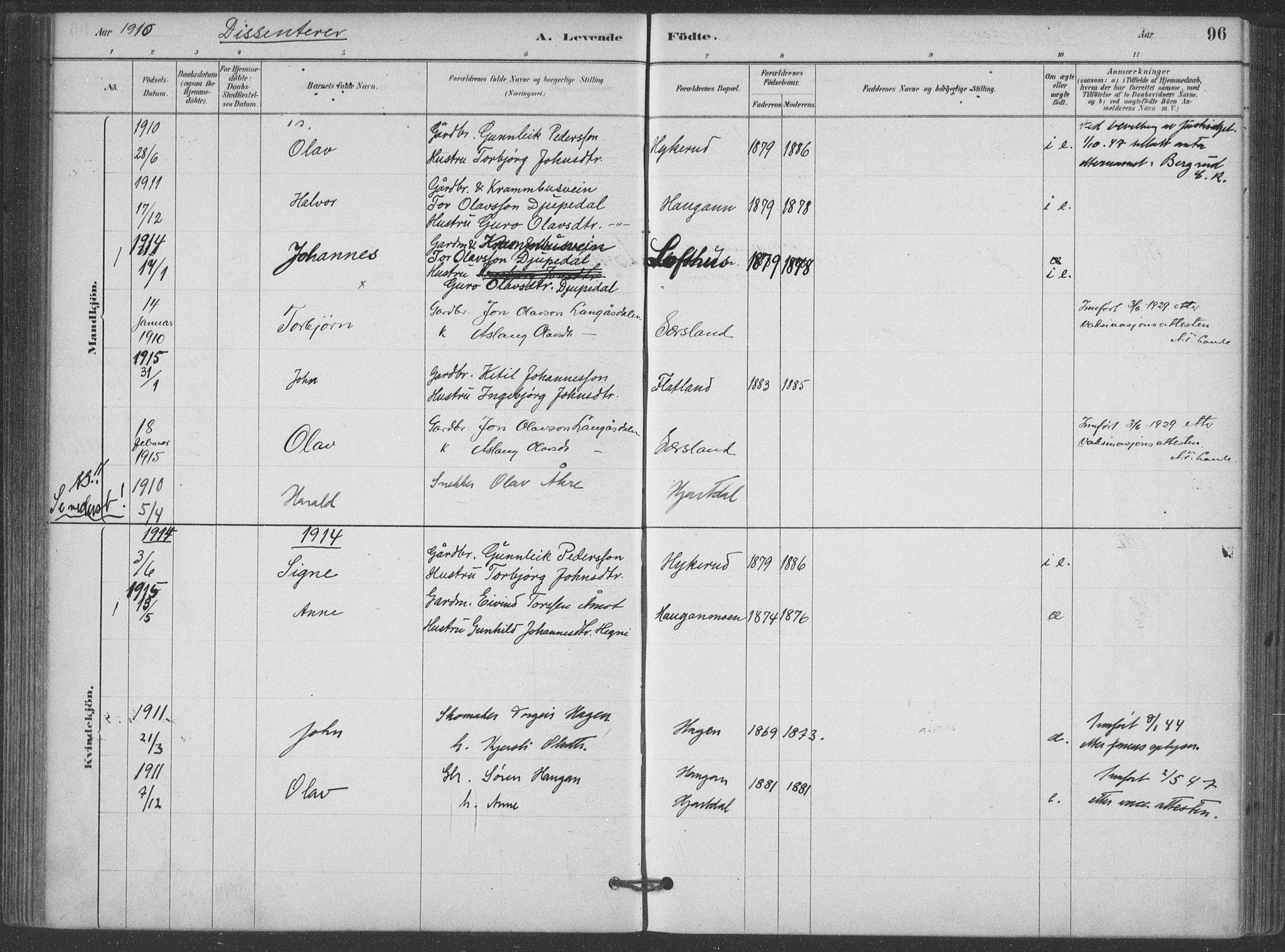 SAKO, Hjartdal kirkebøker, F/Fa/L0010: Ministerialbok nr. I 10, 1880-1929, s. 96