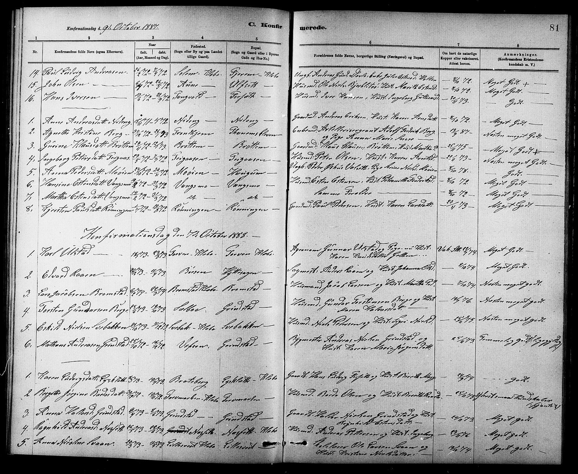 SAT, Ministerialprotokoller, klokkerbøker og fødselsregistre - Sør-Trøndelag, 618/L0452: Klokkerbok nr. 618C03, 1884-1906, s. 81