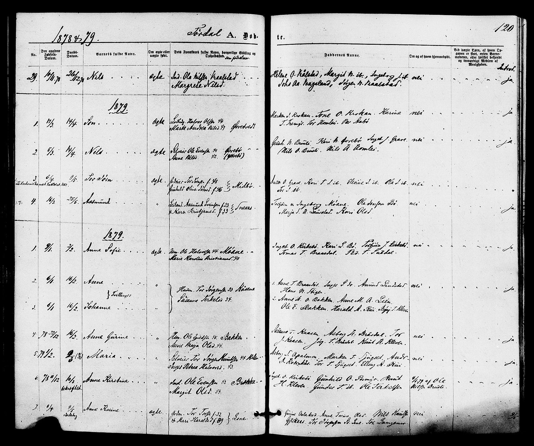 SAKO, Drangedal kirkebøker, F/Fa/L0009: Ministerialbok nr. 9 /2, 1872-1884, s. 120