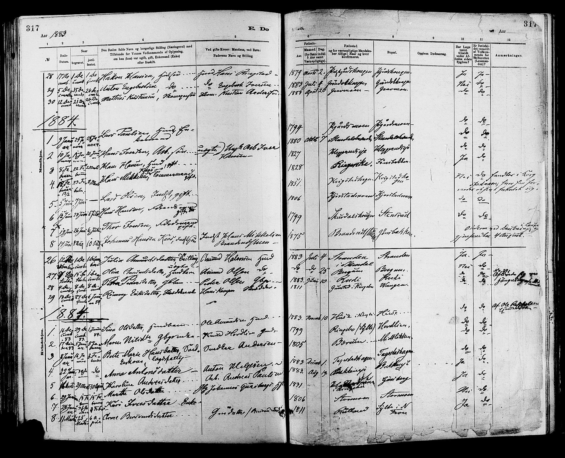 SAH, Sør-Fron prestekontor, H/Ha/Haa/L0003: Ministerialbok nr. 3, 1881-1897, s. 317