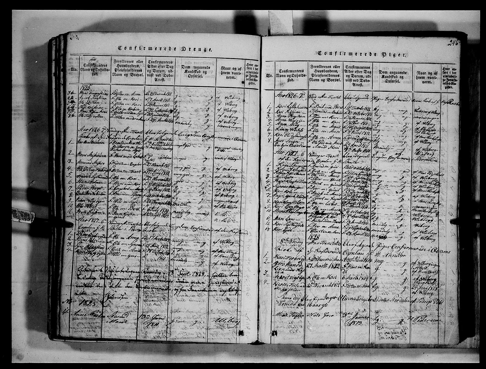 SAH, Fron prestekontor, H/Ha/Hab/L0002: Klokkerbok nr. 2, 1816-1850, s. 246