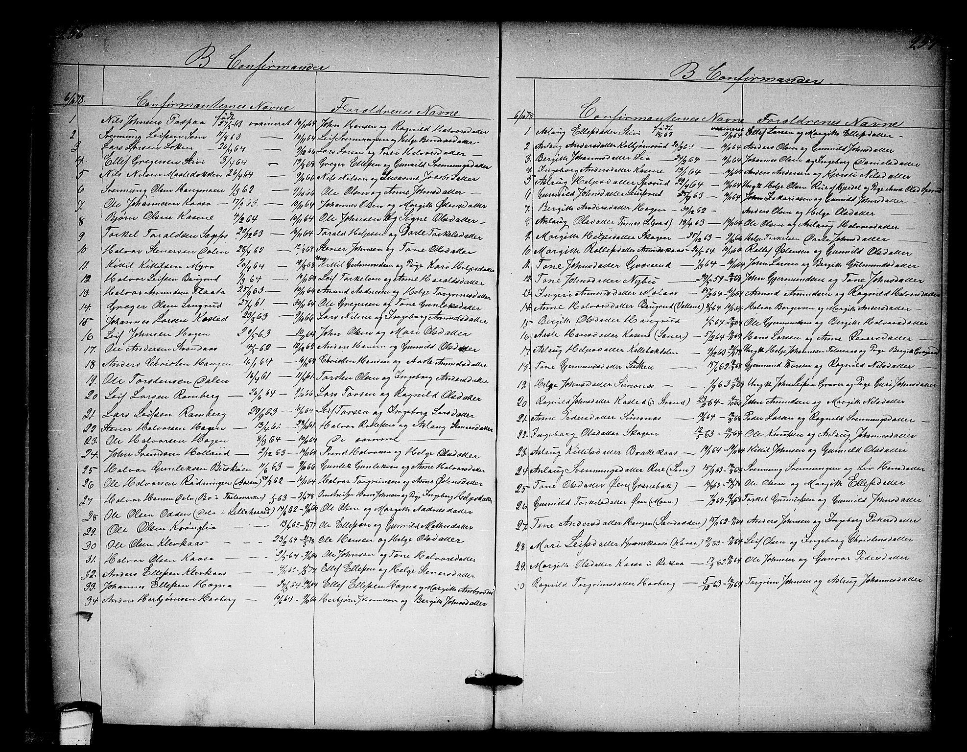 SAKO, Heddal kirkebøker, G/Ga/L0001: Klokkerbok nr. I 1, 1866-1878, s. 256-257