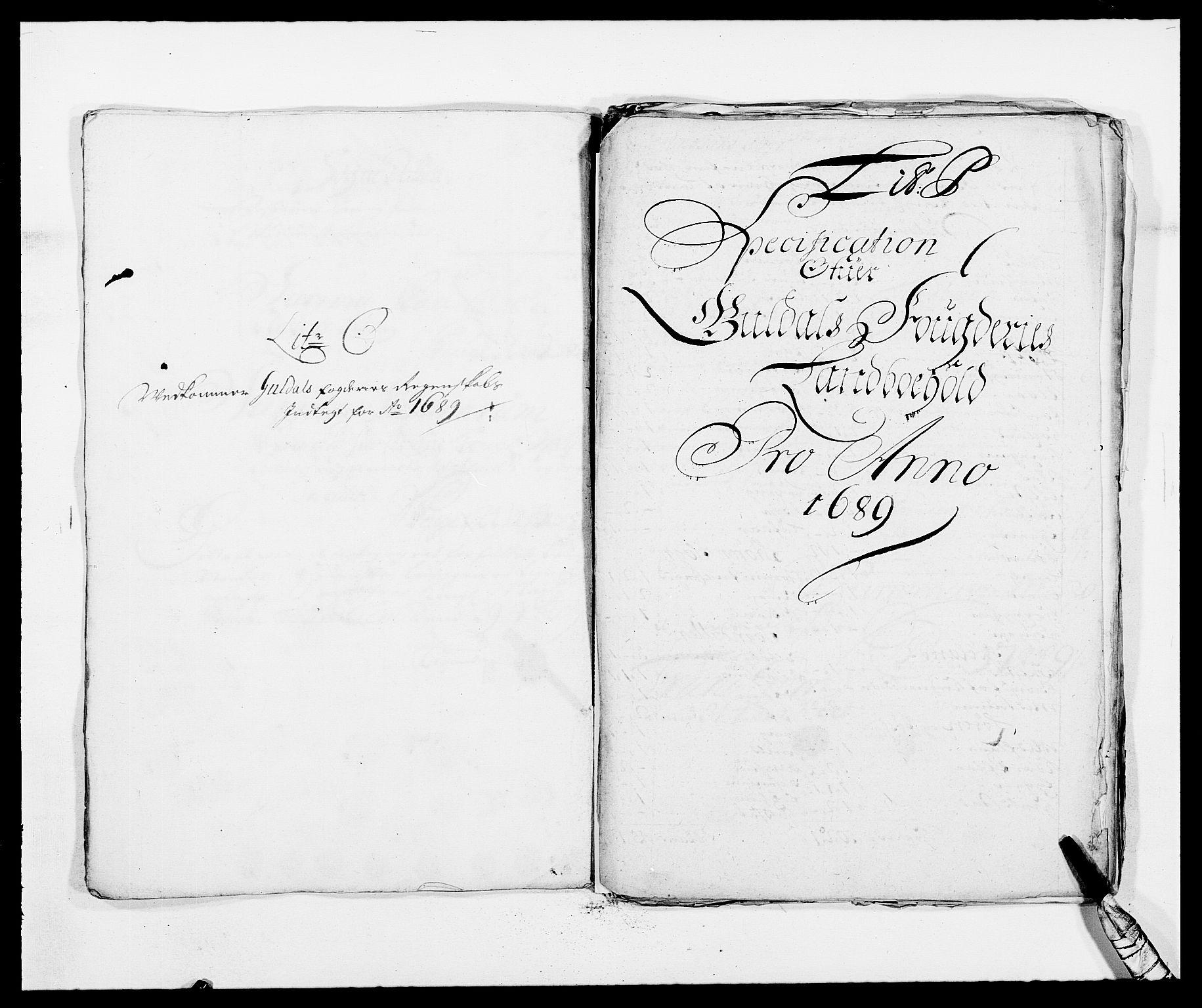 RA, Rentekammeret inntil 1814, Reviderte regnskaper, Fogderegnskap, R59/L3940: Fogderegnskap Gauldal, 1689-1690, s. 146