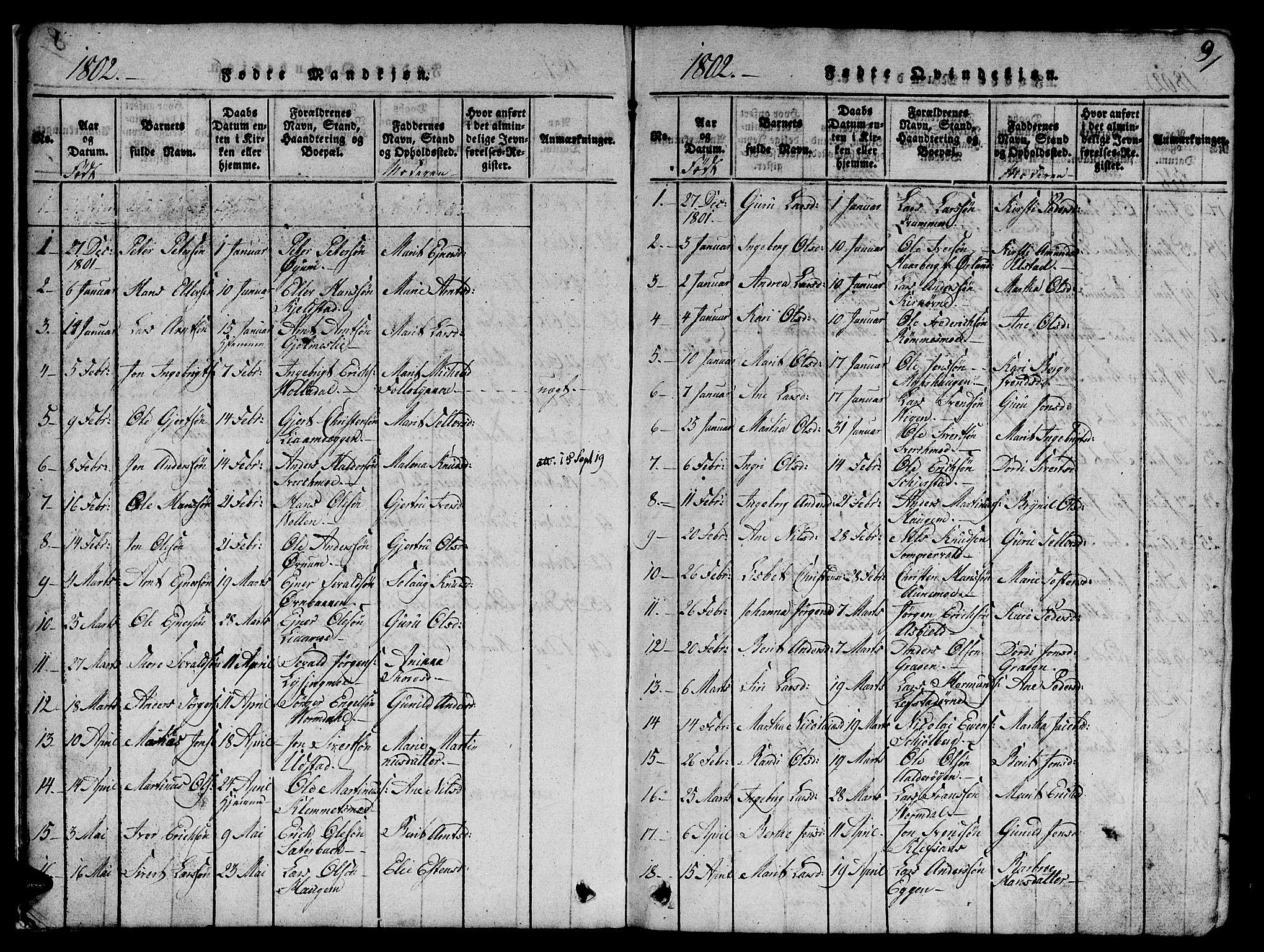 SAT, Ministerialprotokoller, klokkerbøker og fødselsregistre - Sør-Trøndelag, 668/L0803: Ministerialbok nr. 668A03, 1800-1826, s. 9