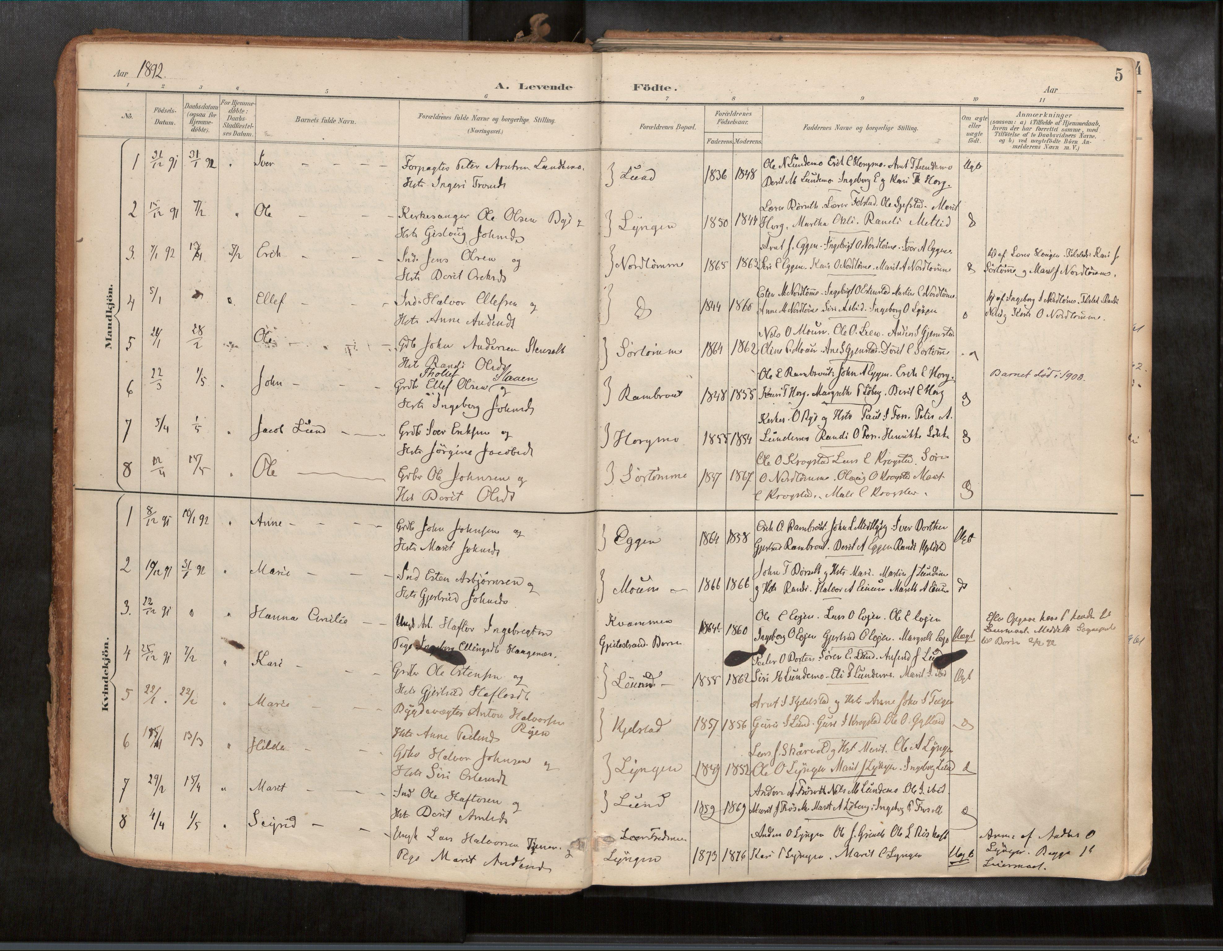 SAT, Ministerialprotokoller, klokkerbøker og fødselsregistre - Sør-Trøndelag, 692/L1105b: Ministerialbok nr. 692A06, 1891-1934, s. 5