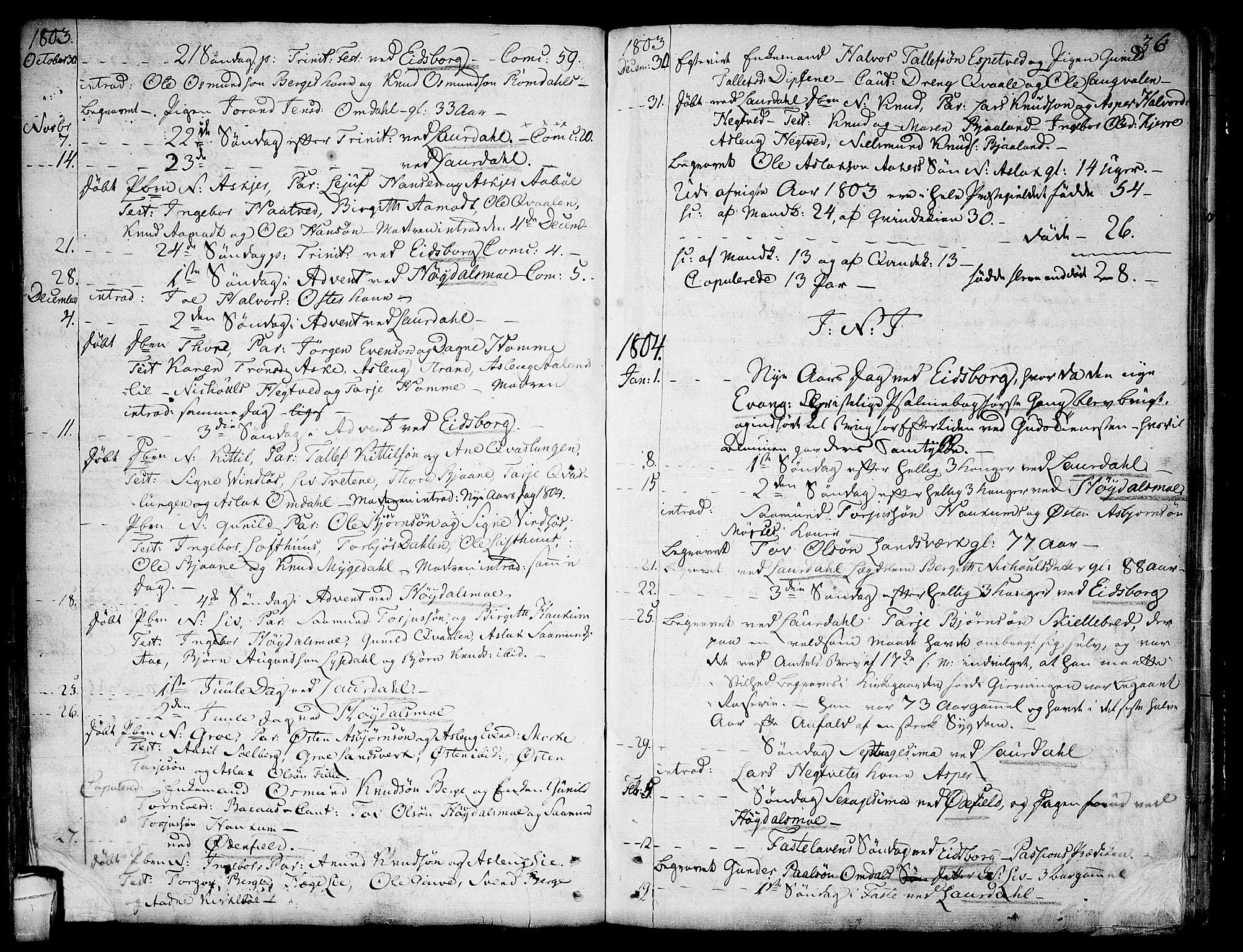 SAKO, Lårdal kirkebøker, F/Fa/L0004: Ministerialbok nr. I 4, 1790-1814, s. 36