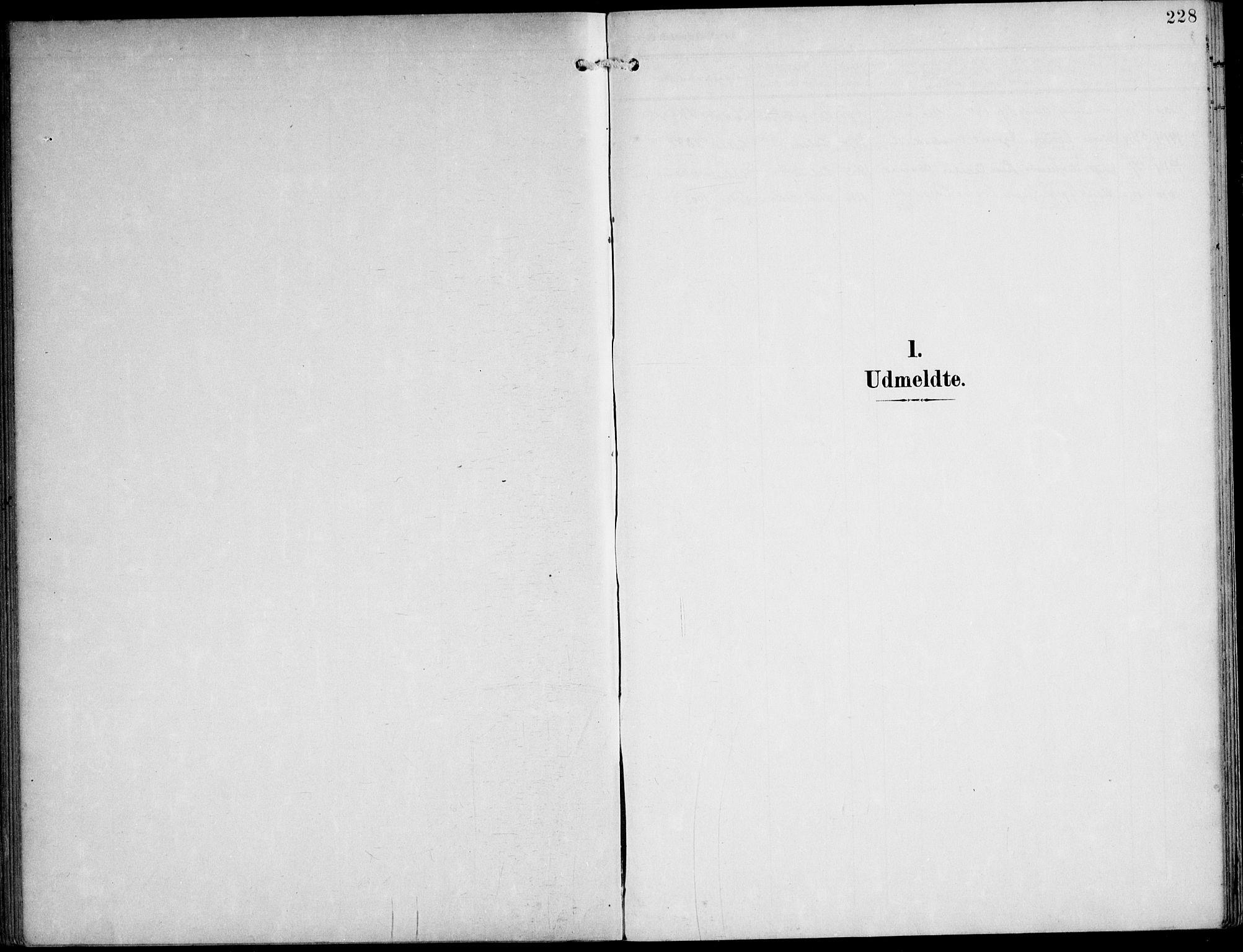 SAT, Ministerialprotokoller, klokkerbøker og fødselsregistre - Nord-Trøndelag, 788/L0698: Ministerialbok nr. 788A05, 1902-1921, s. 228