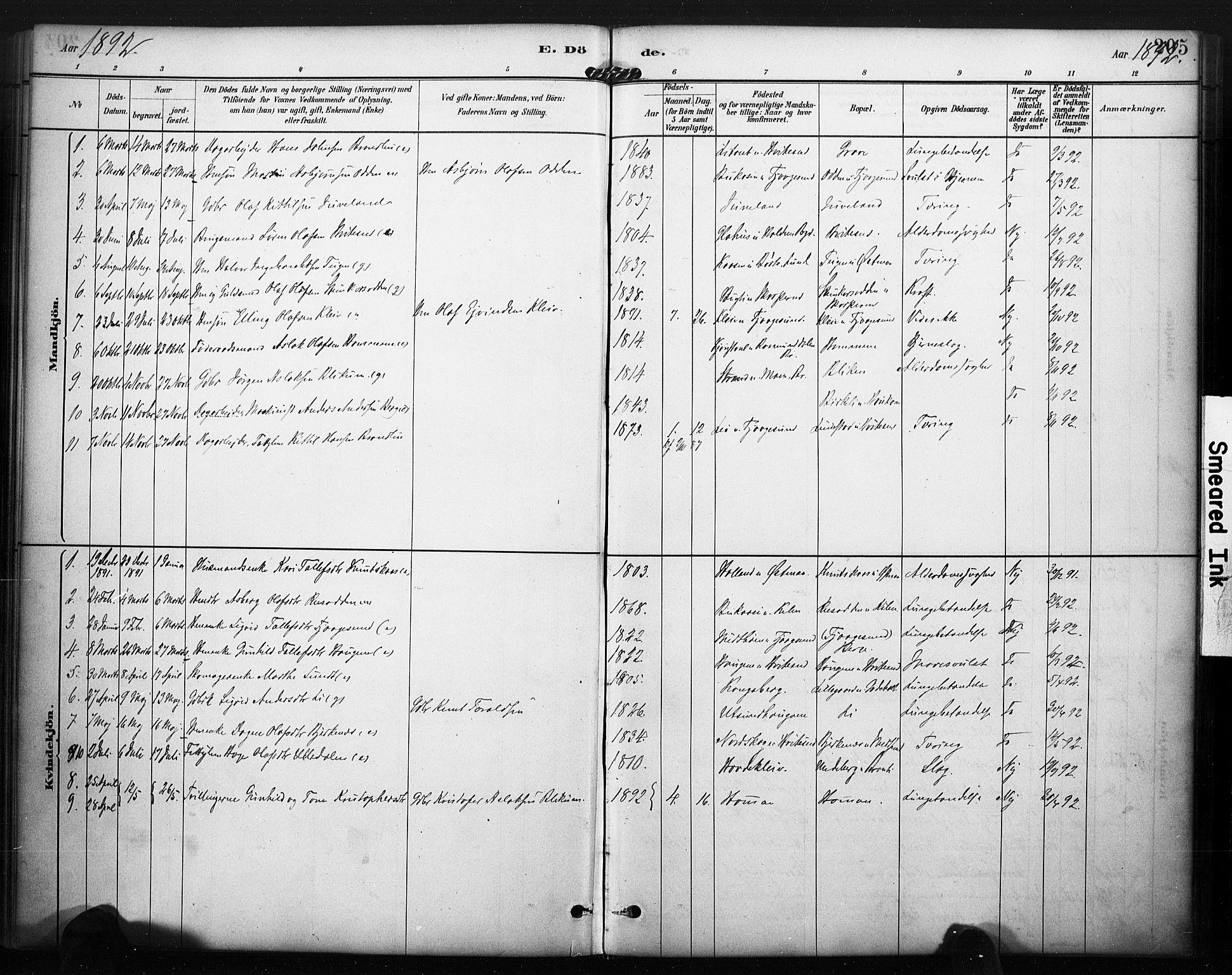 SAKO, Kviteseid kirkebøker, F/Fa/L0008: Ministerialbok nr. I 8, 1882-1903, s. 205