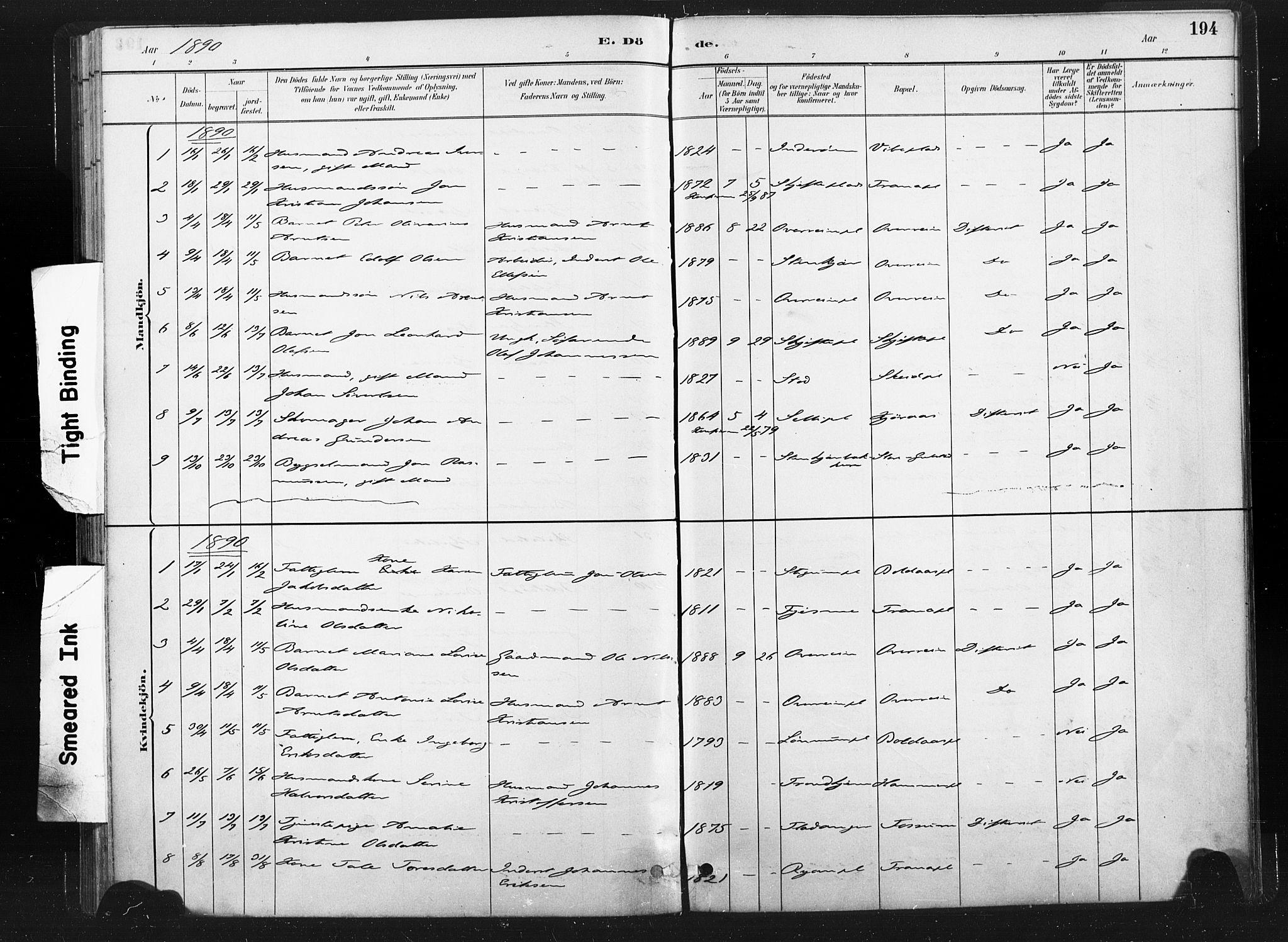 SAT, Ministerialprotokoller, klokkerbøker og fødselsregistre - Nord-Trøndelag, 736/L0361: Ministerialbok nr. 736A01, 1884-1906, s. 194