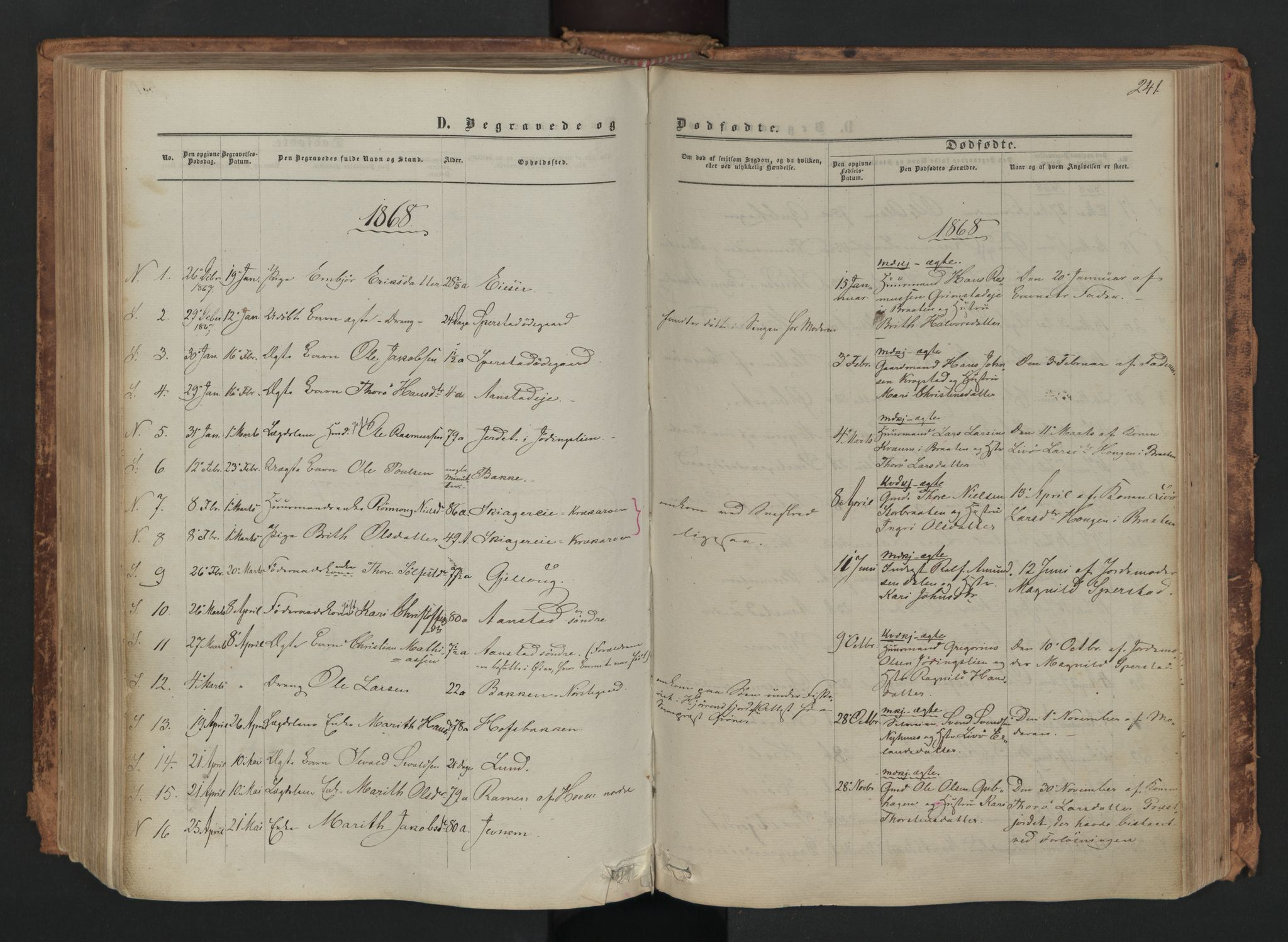 SAH, Skjåk prestekontor, Ministerialbok nr. 1, 1863-1879, s. 241