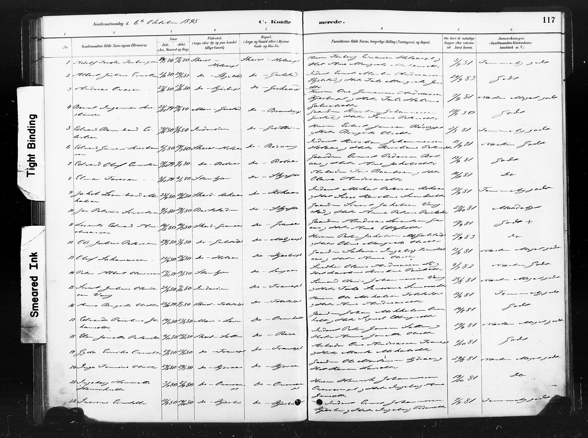 SAT, Ministerialprotokoller, klokkerbøker og fødselsregistre - Nord-Trøndelag, 736/L0361: Ministerialbok nr. 736A01, 1884-1906, s. 117