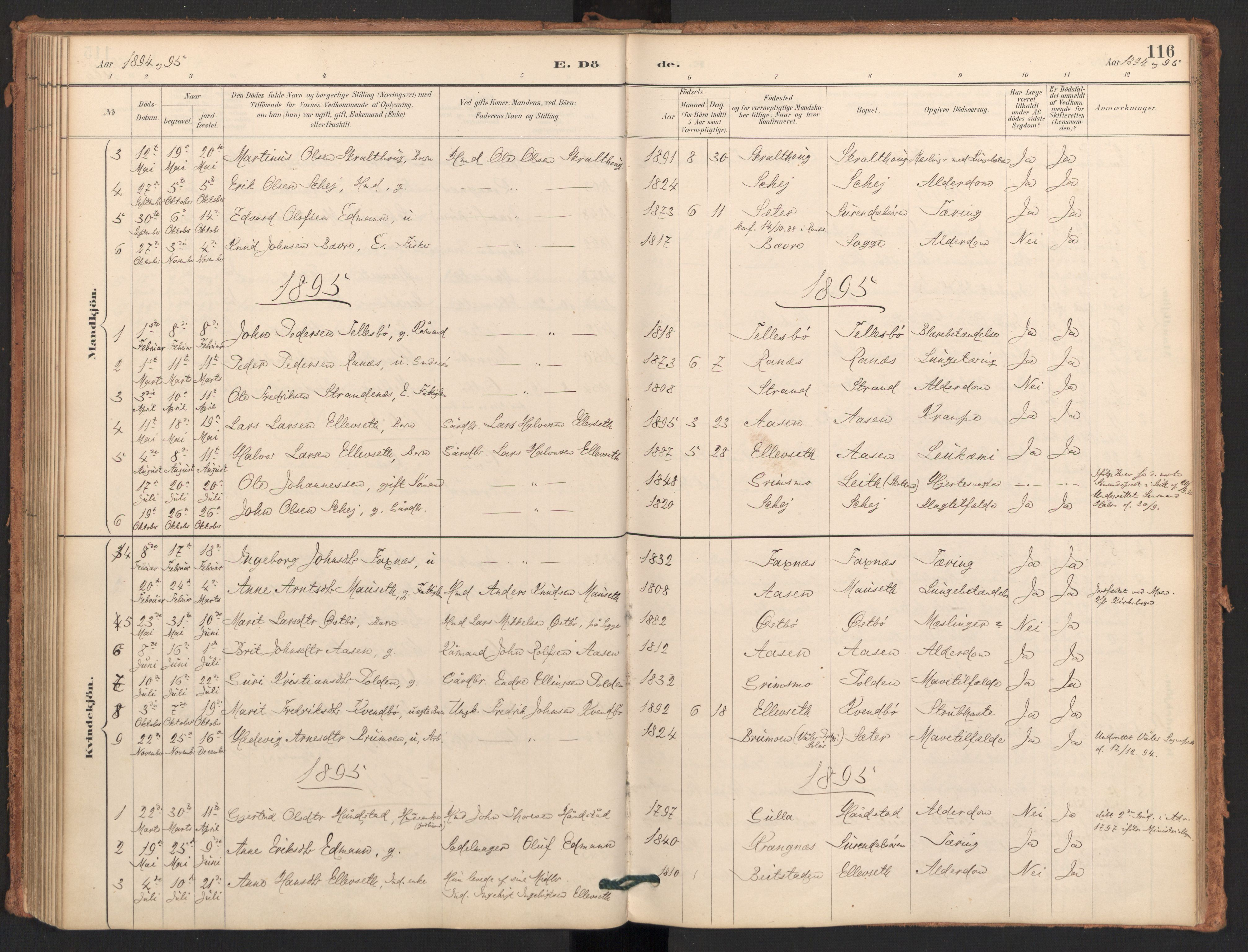 SAT, Ministerialprotokoller, klokkerbøker og fødselsregistre - Møre og Romsdal, 596/L1056: Ministerialbok nr. 596A01, 1885-1900, s. 116