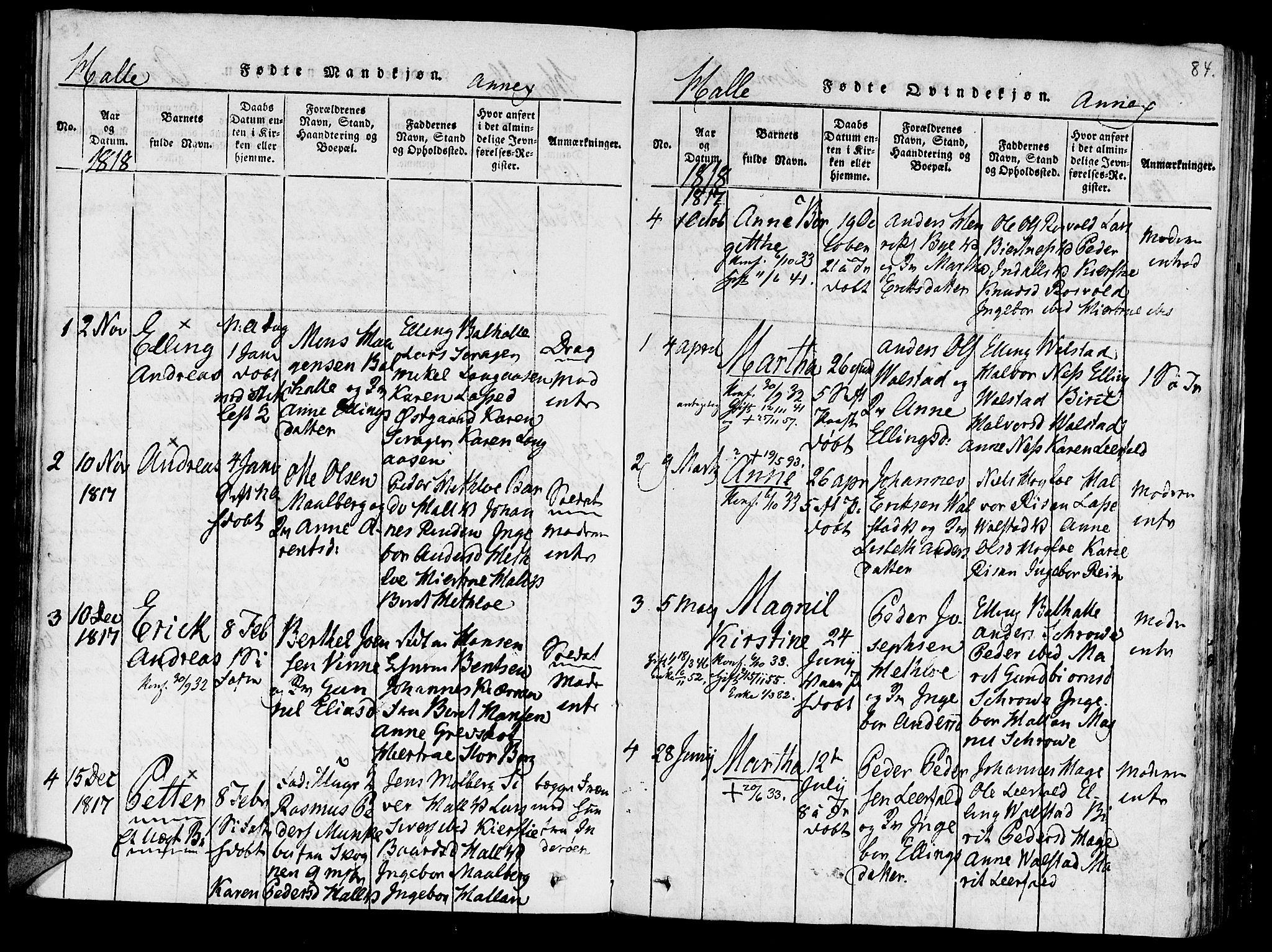 SAT, Ministerialprotokoller, klokkerbøker og fødselsregistre - Nord-Trøndelag, 723/L0234: Ministerialbok nr. 723A05 /3, 1817-1821, s. 84