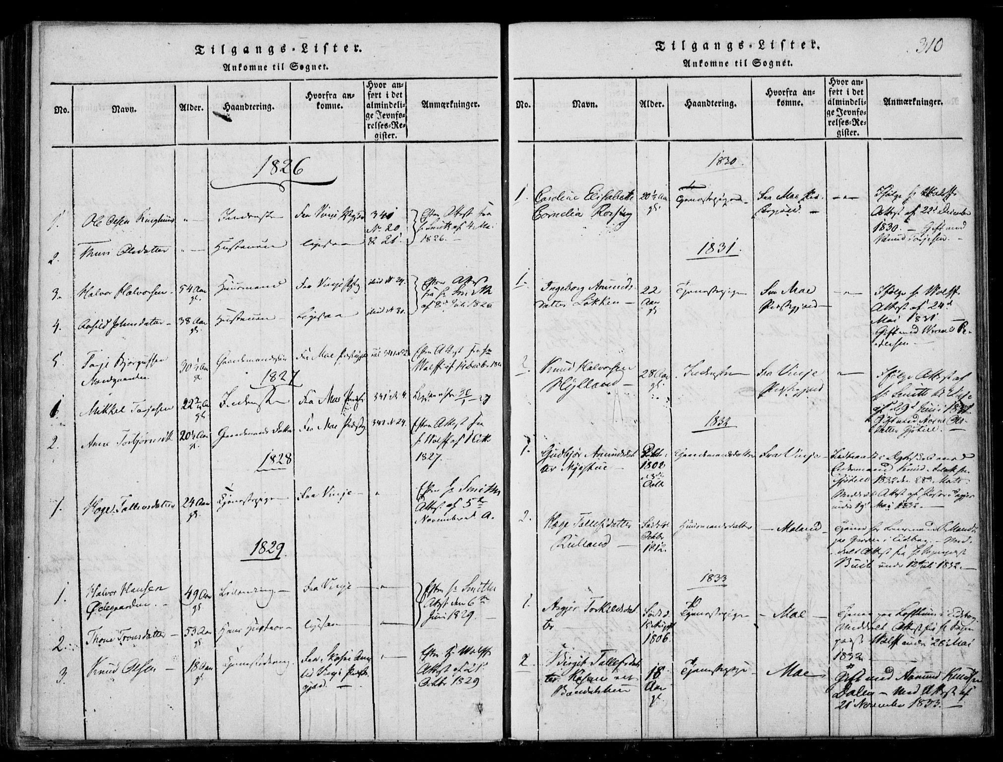 SAKO, Lårdal kirkebøker, F/Fb/L0001: Ministerialbok nr. II 1, 1815-1860, s. 310