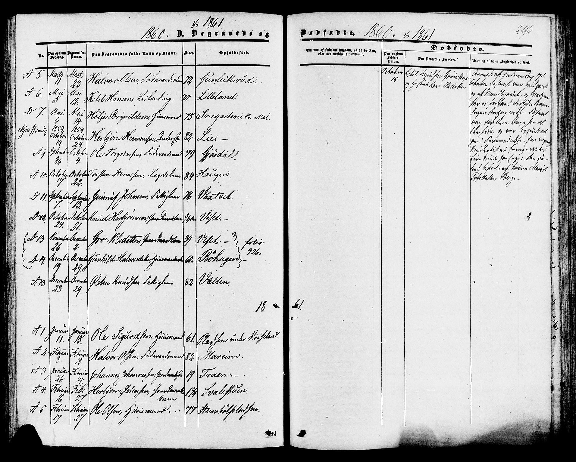 SAKO, Tinn kirkebøker, F/Fa/L0006: Ministerialbok nr. I 6, 1857-1878, s. 296