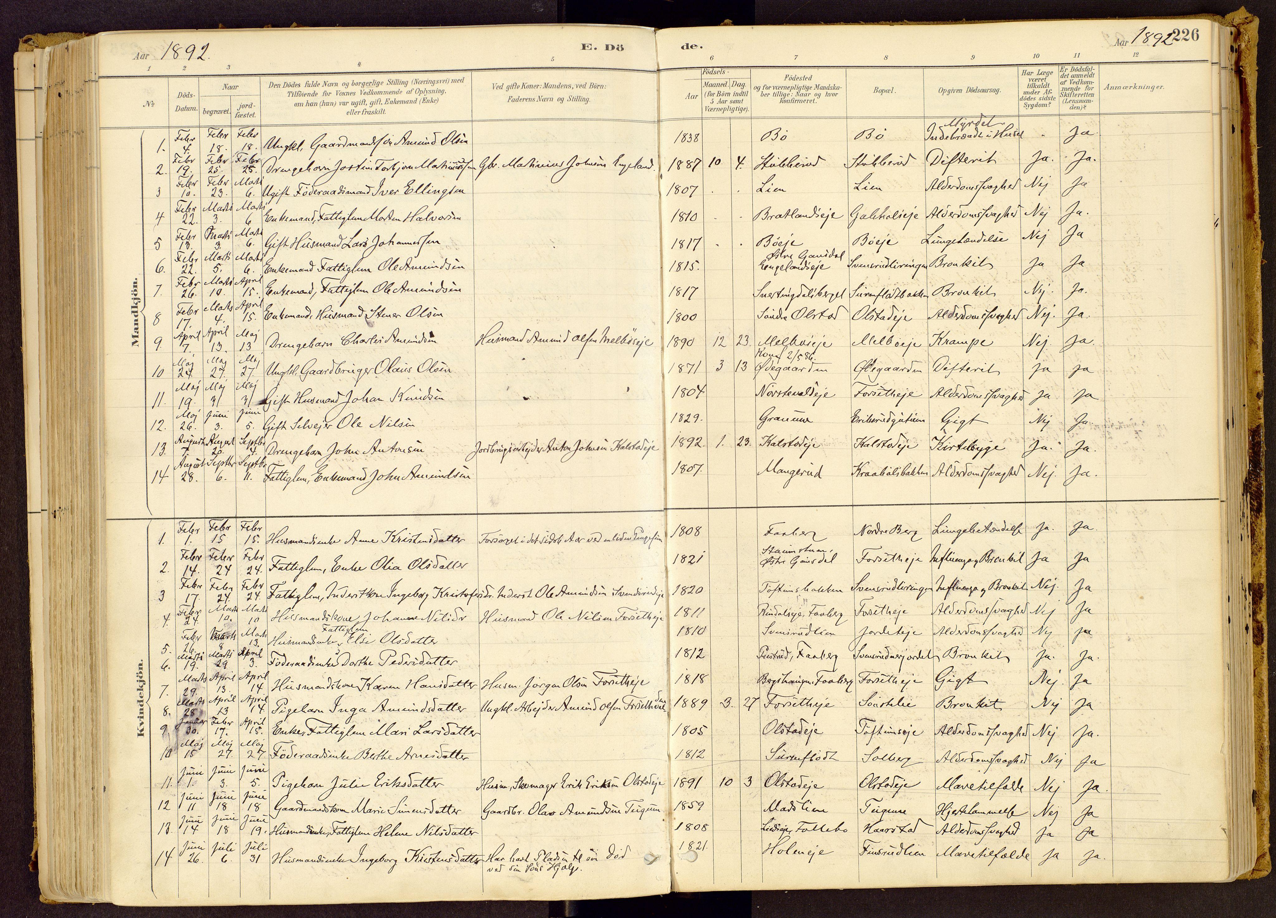 SAH, Vestre Gausdal prestekontor, Ministerialbok nr. 1, 1887-1914, s. 226