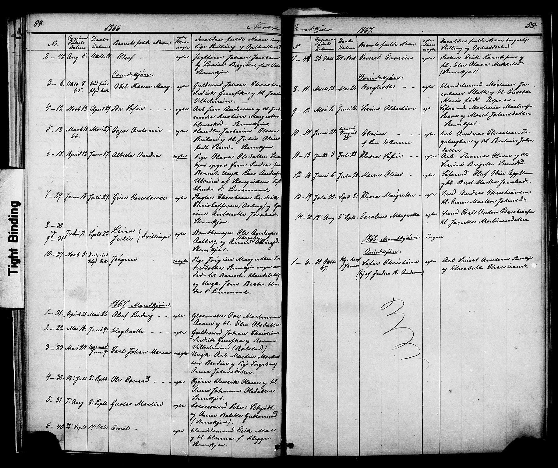 SAT, Ministerialprotokoller, klokkerbøker og fødselsregistre - Nord-Trøndelag, 739/L0367: Ministerialbok nr. 739A01 /2, 1838-1868, s. 54-55