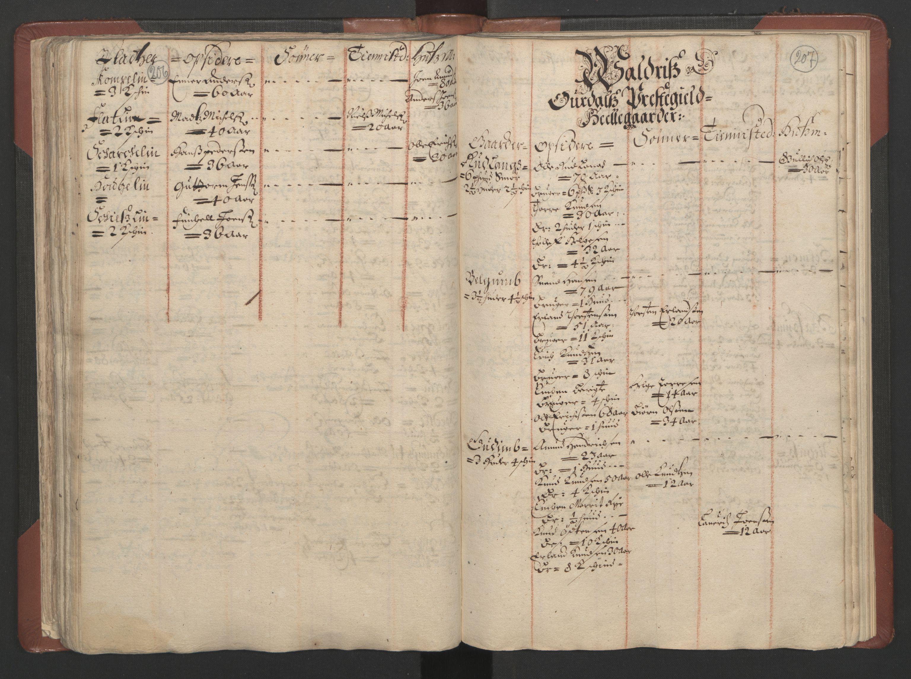 RA, Fogdenes og sorenskrivernes manntall 1664-1666, nr. 4: Hadeland og Valdres fogderi og Gudbrandsdal fogderi, 1664, s. 206-207