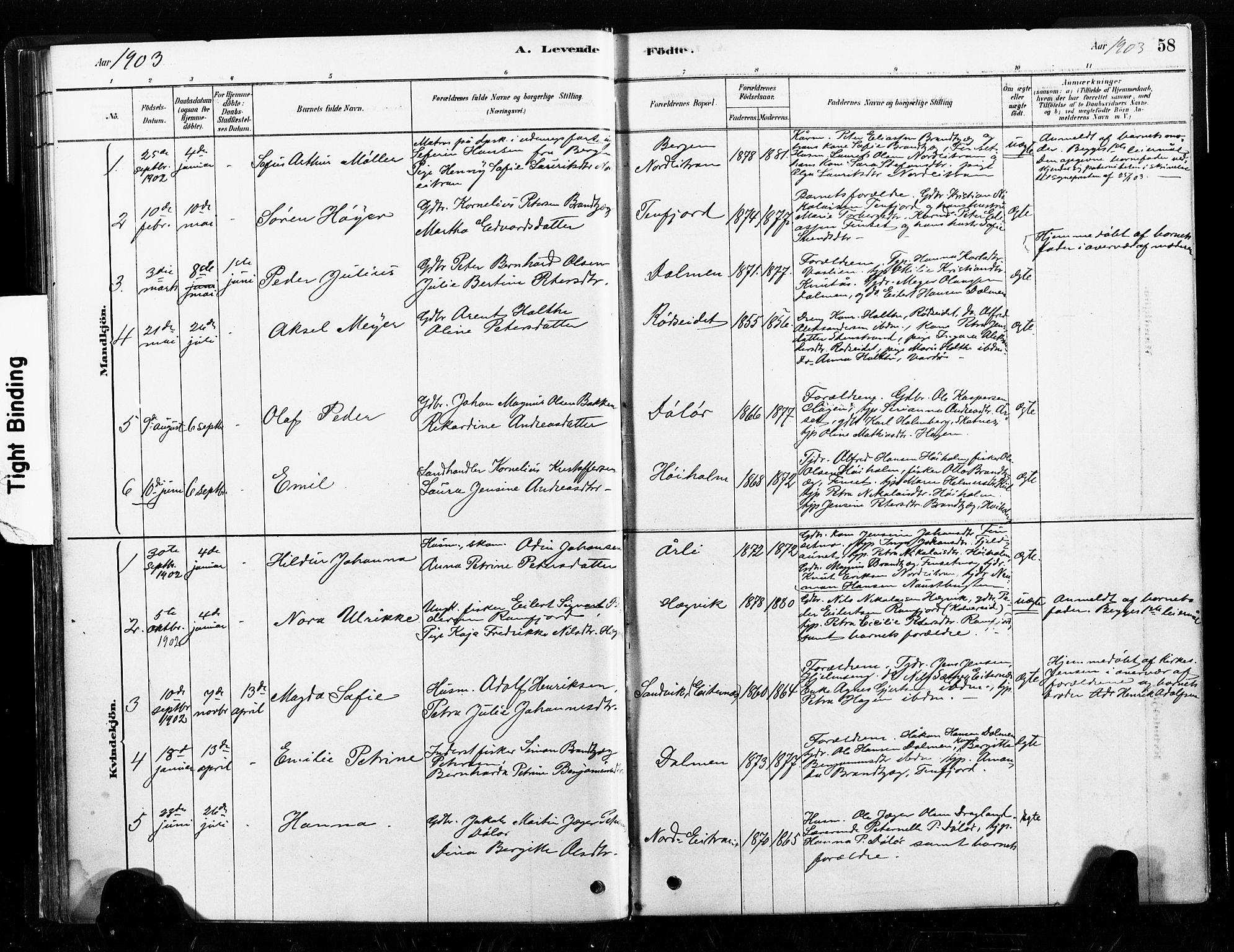 SAT, Ministerialprotokoller, klokkerbøker og fødselsregistre - Nord-Trøndelag, 789/L0705: Ministerialbok nr. 789A01, 1878-1910, s. 58