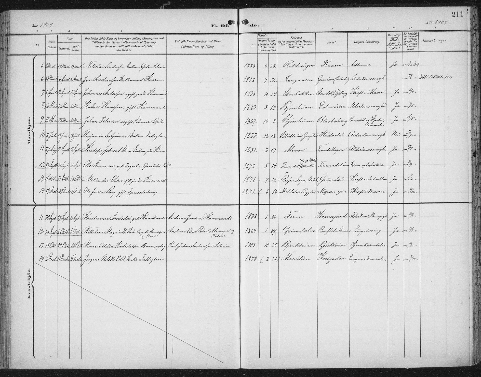 SAT, Ministerialprotokoller, klokkerbøker og fødselsregistre - Nord-Trøndelag, 701/L0011: Ministerialbok nr. 701A11, 1899-1915, s. 211