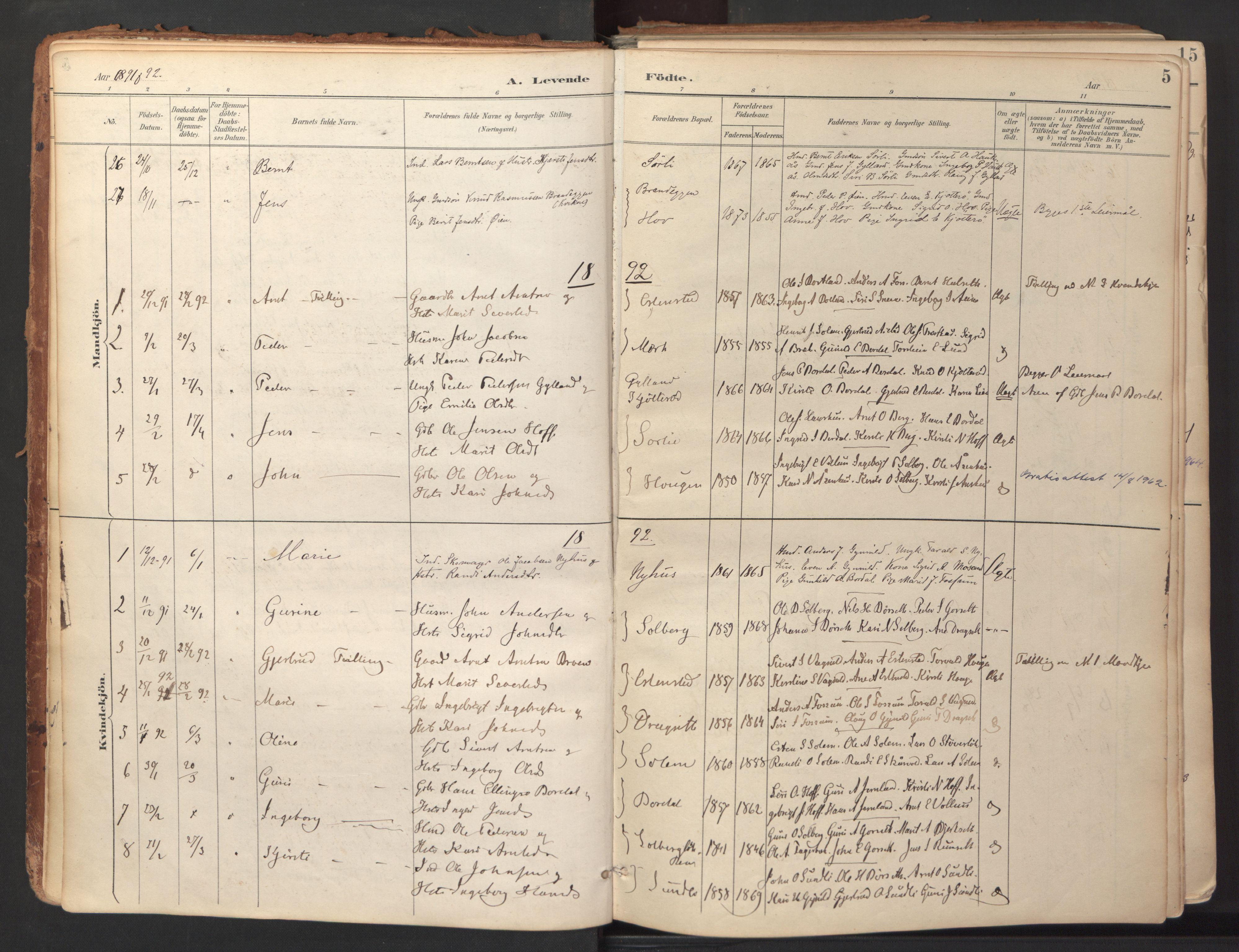 SAT, Ministerialprotokoller, klokkerbøker og fødselsregistre - Sør-Trøndelag, 689/L1041: Ministerialbok nr. 689A06, 1891-1923, s. 5