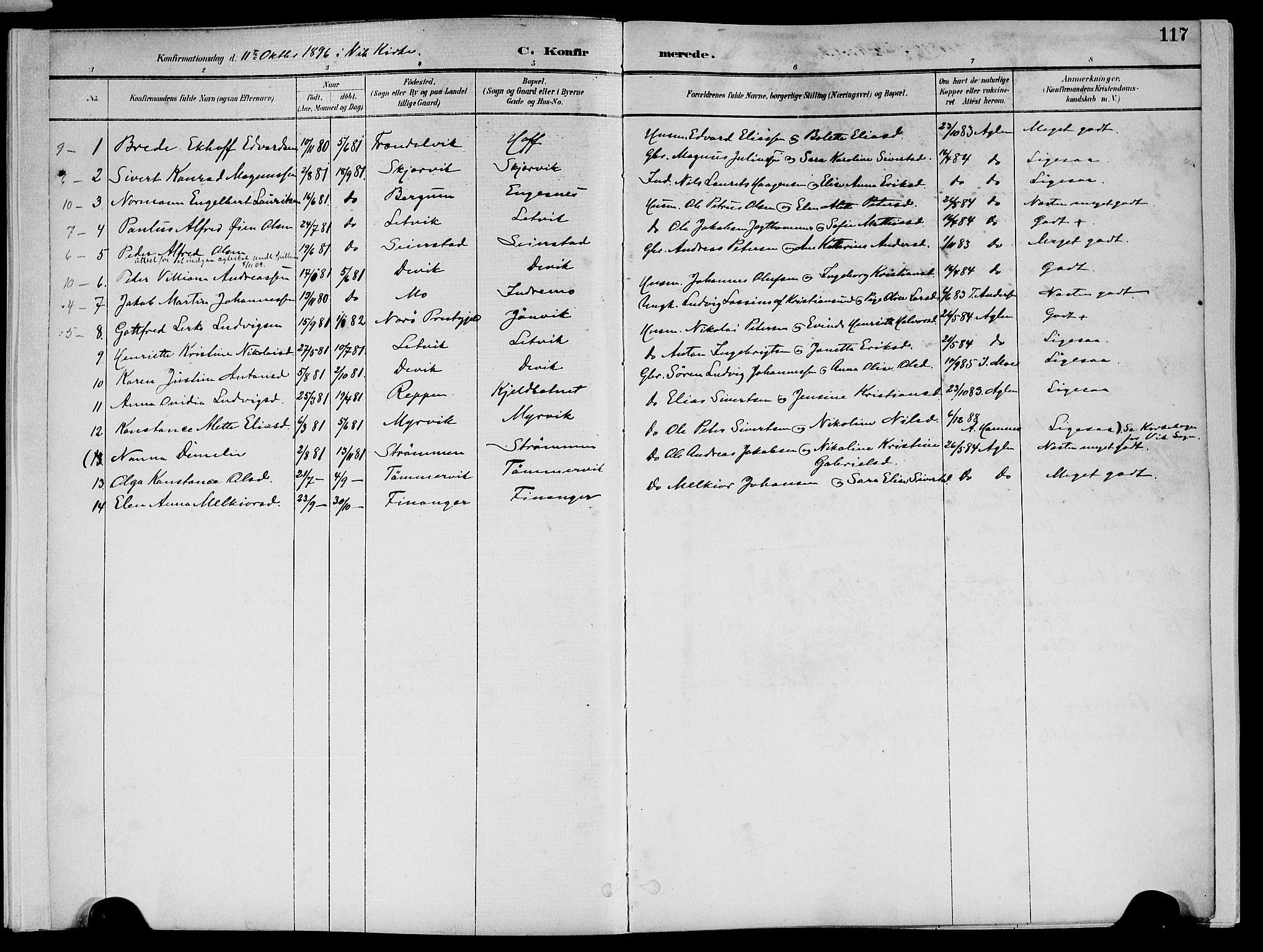 SAT, Ministerialprotokoller, klokkerbøker og fødselsregistre - Nord-Trøndelag, 773/L0617: Ministerialbok nr. 773A08, 1887-1910, s. 117