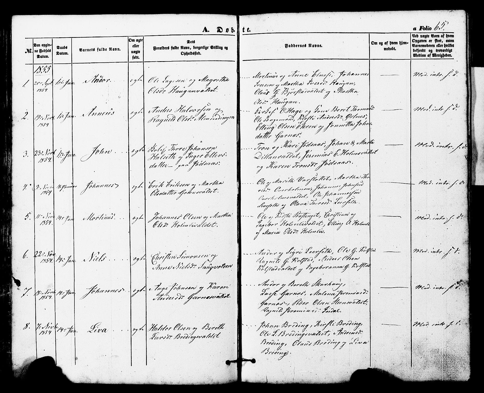 SAT, Ministerialprotokoller, klokkerbøker og fødselsregistre - Nord-Trøndelag, 724/L0268: Klokkerbok nr. 724C04, 1846-1878, s. 65