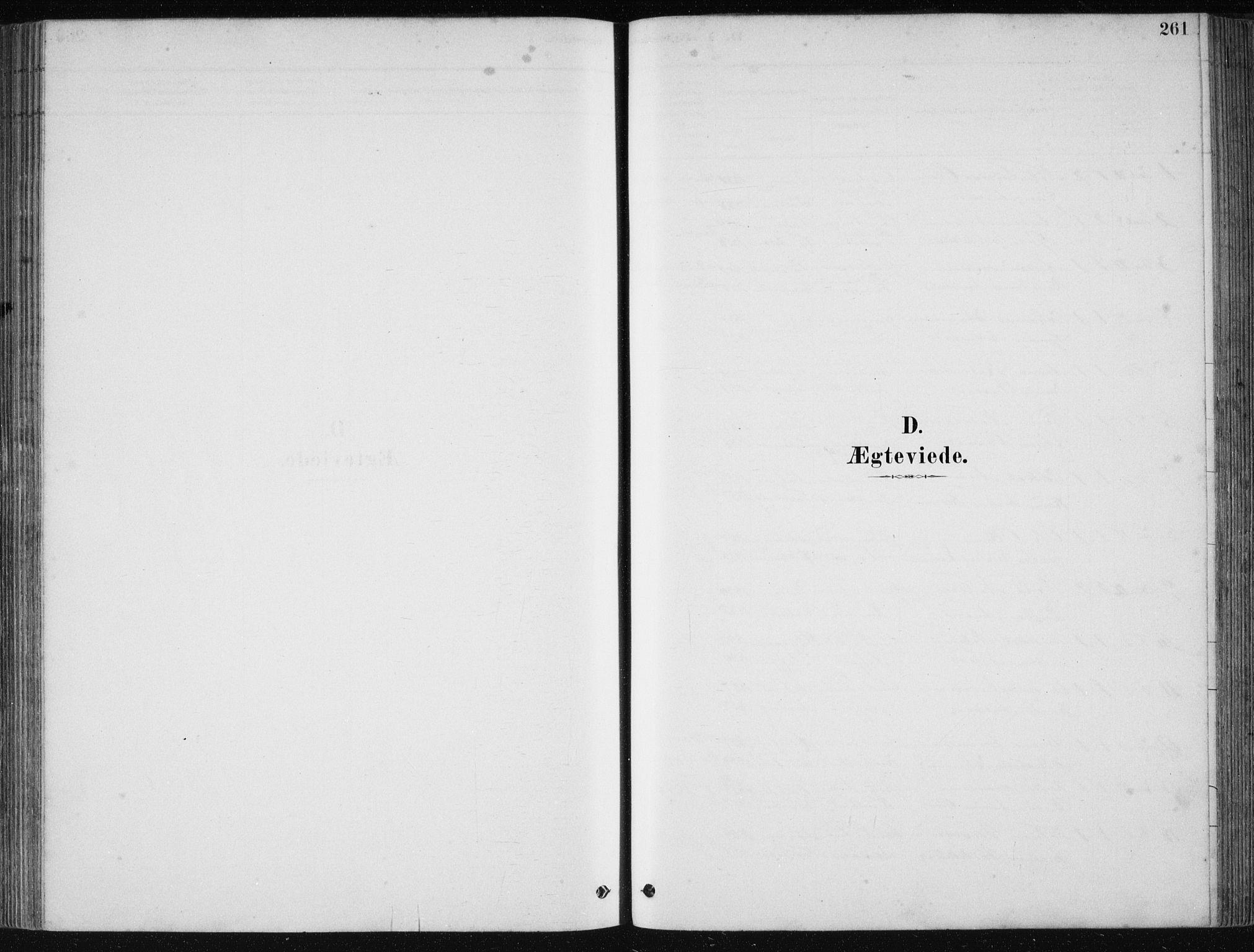 SAB, Fjell Sokneprestembete, H/Haa: Ministerialbok nr. A  8, 1878-1898, s. 261