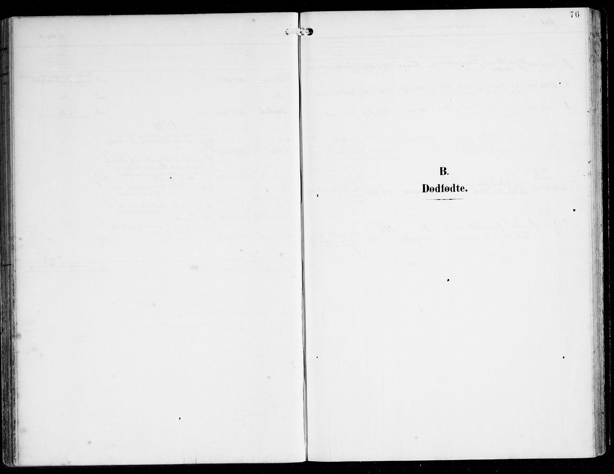 SAB, Alversund Sokneprestembete, H/Ha/Haa/Haac/L0002: Ministerialbok nr. C 2, 1901-1921, s. 76