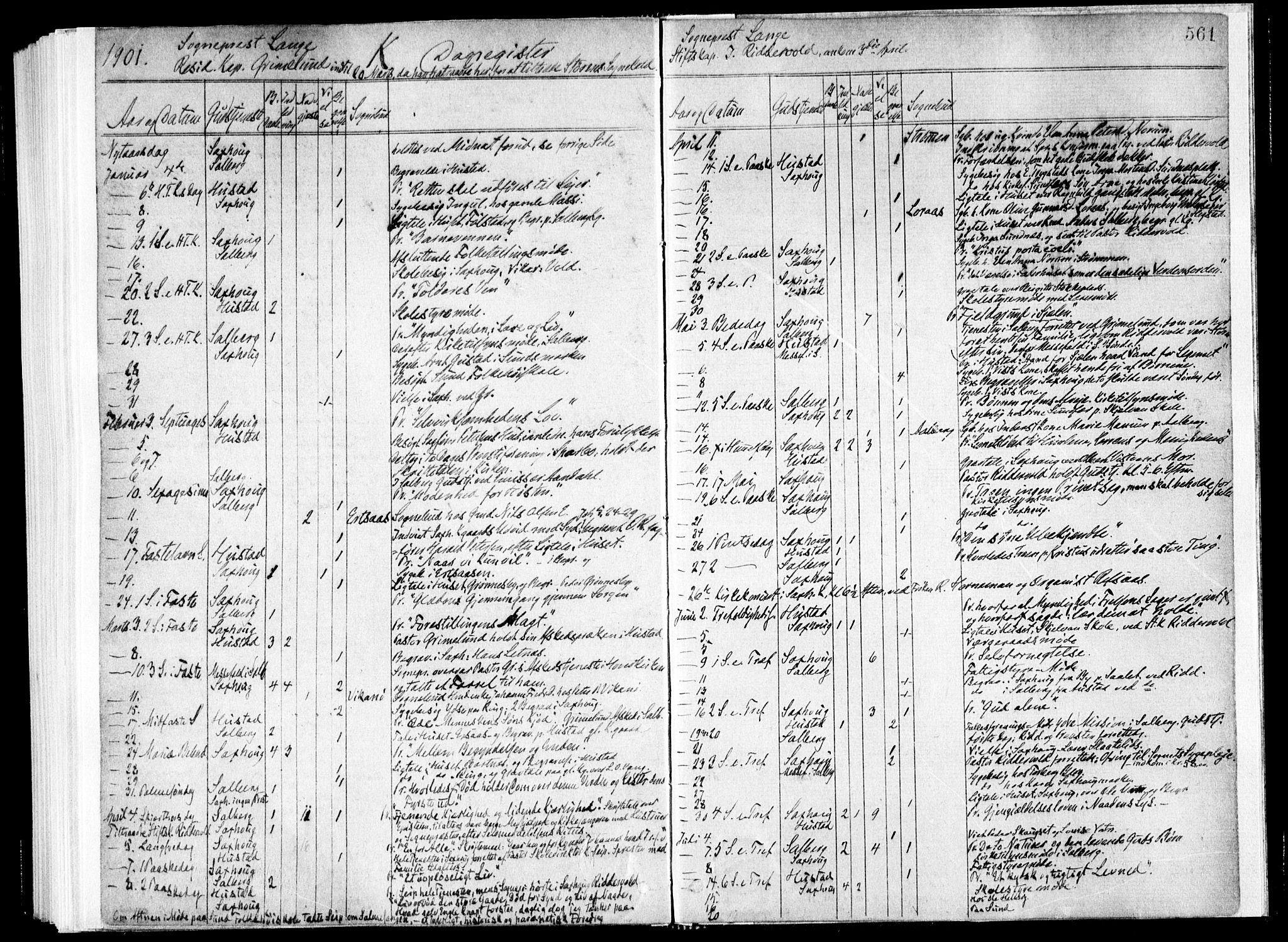 SAT, Ministerialprotokoller, klokkerbøker og fødselsregistre - Nord-Trøndelag, 730/L0285: Ministerialbok nr. 730A10, 1879-1914, s. 561