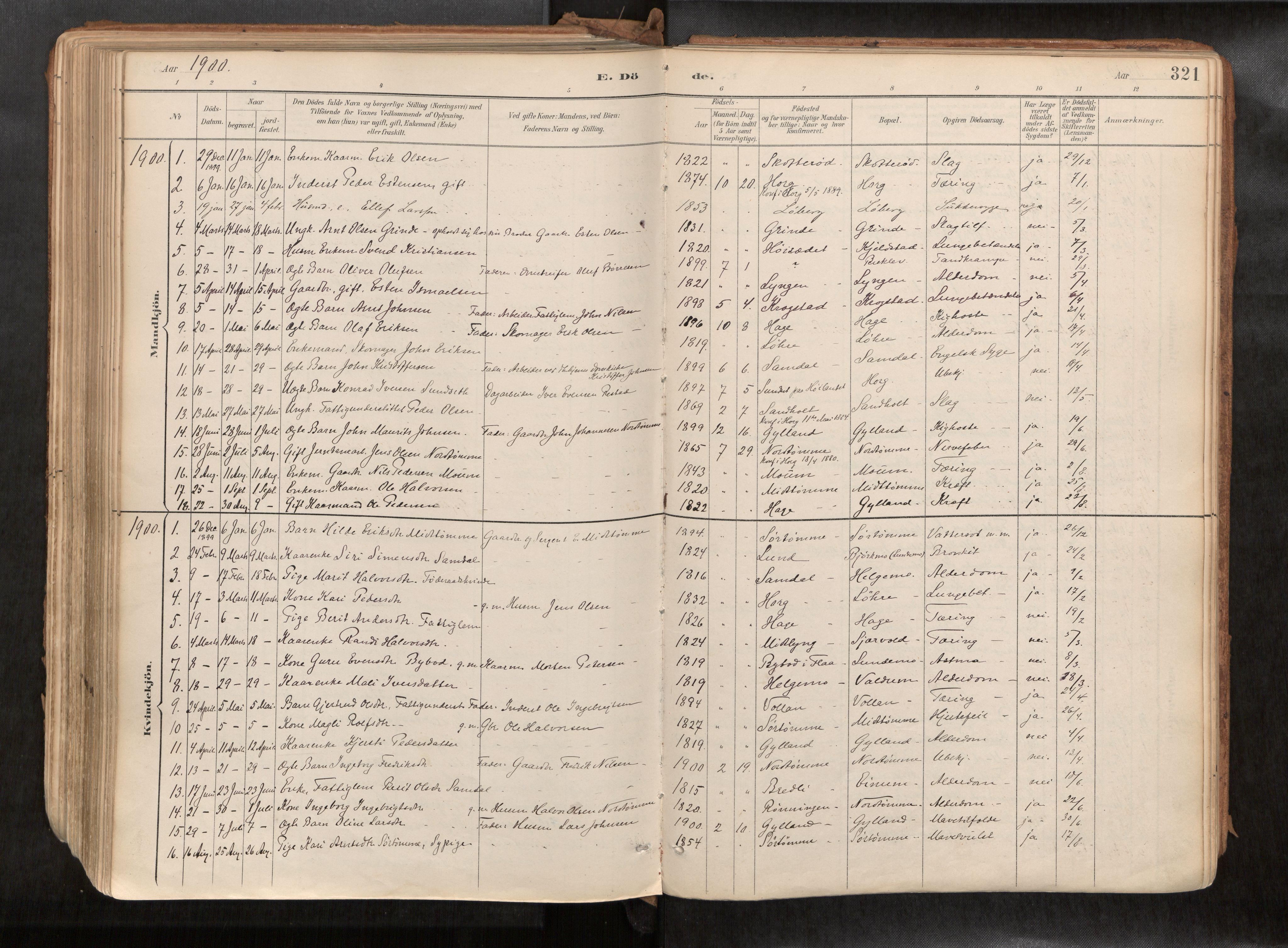SAT, Ministerialprotokoller, klokkerbøker og fødselsregistre - Sør-Trøndelag, 692/L1105b: Ministerialbok nr. 692A06, 1891-1934, s. 321
