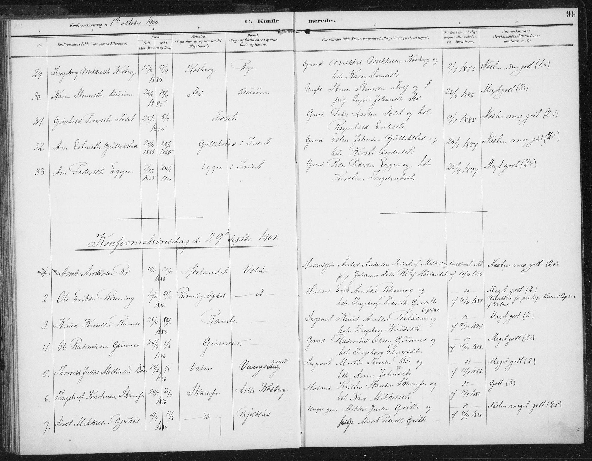 SAT, Ministerialprotokoller, klokkerbøker og fødselsregistre - Sør-Trøndelag, 674/L0872: Ministerialbok nr. 674A04, 1897-1907, s. 99