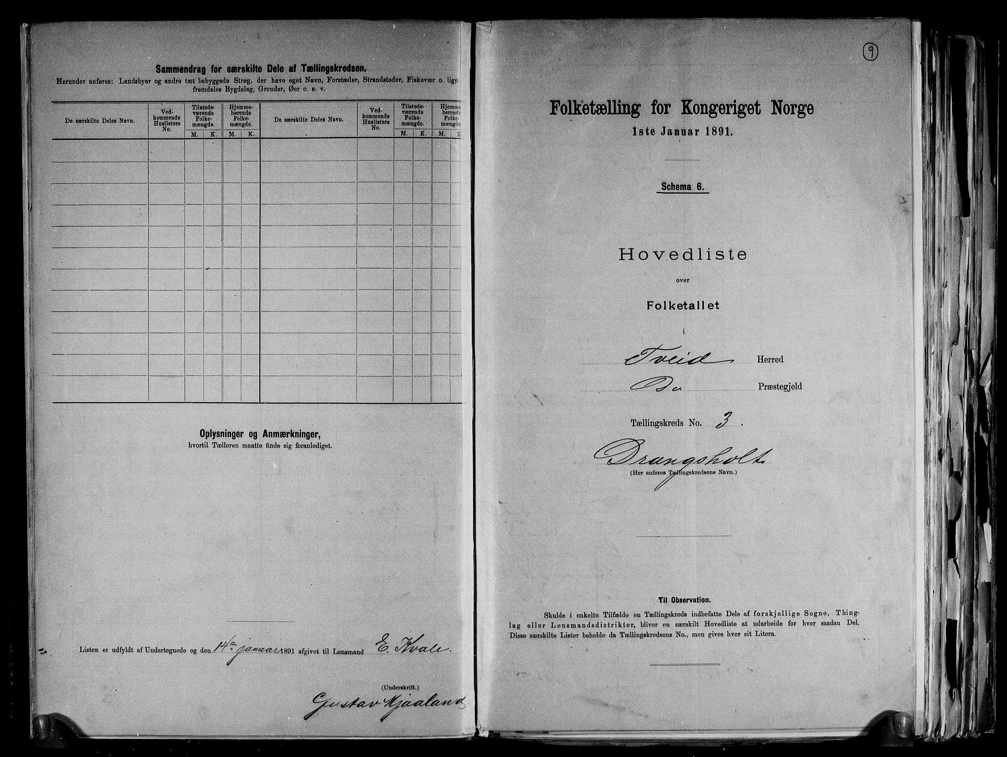 RA, Folketelling 1891 for 1013 Tveit herred, 1891, s. 9