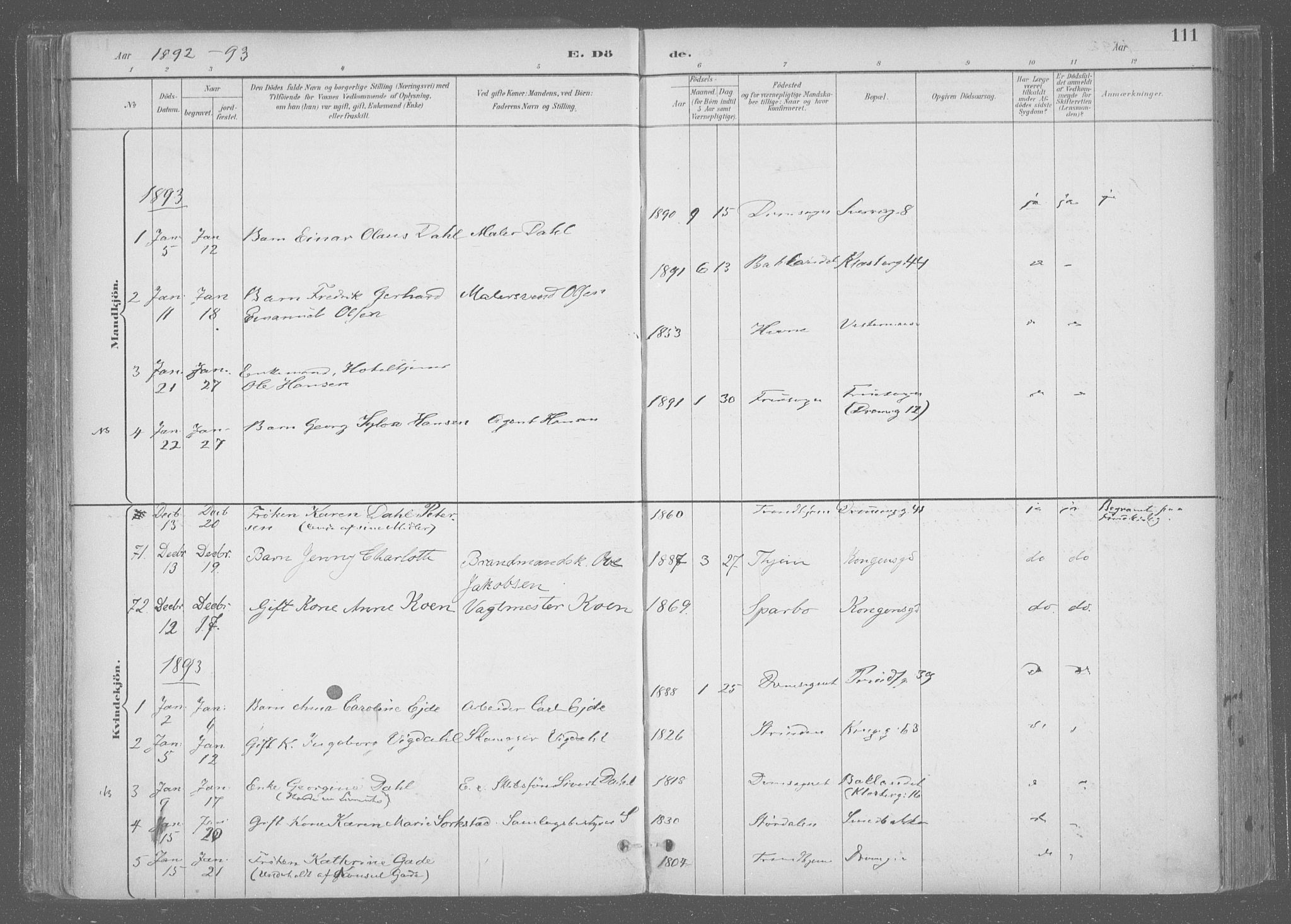 SAT, Ministerialprotokoller, klokkerbøker og fødselsregistre - Sør-Trøndelag, 601/L0064: Ministerialbok nr. 601A31, 1891-1911, s. 111