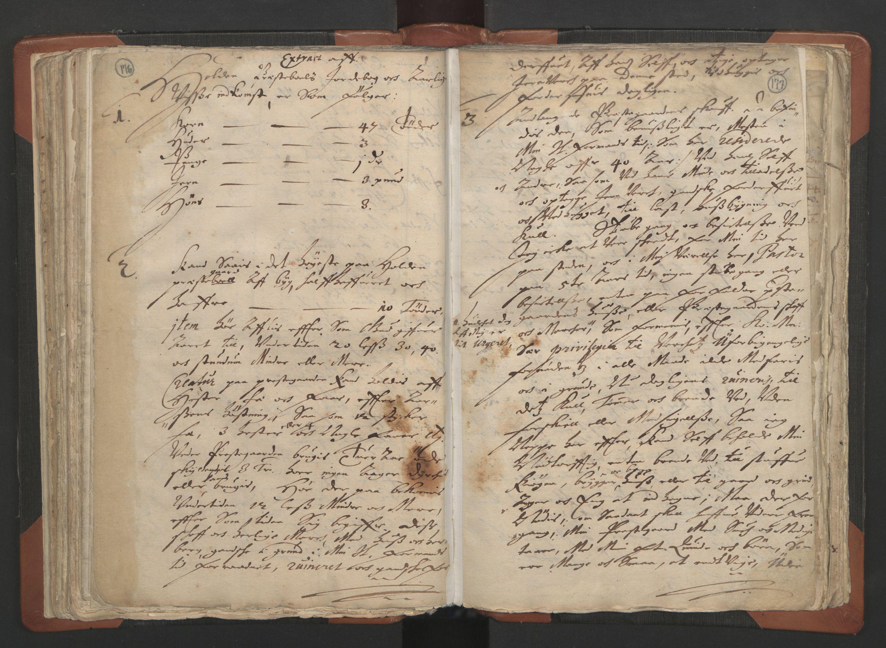 RA, Sogneprestenes manntall 1664-1666, nr. 12: Øvre Telemark prosti, Nedre Telemark prosti og Bamble prosti, 1664-1666, s. 176-177