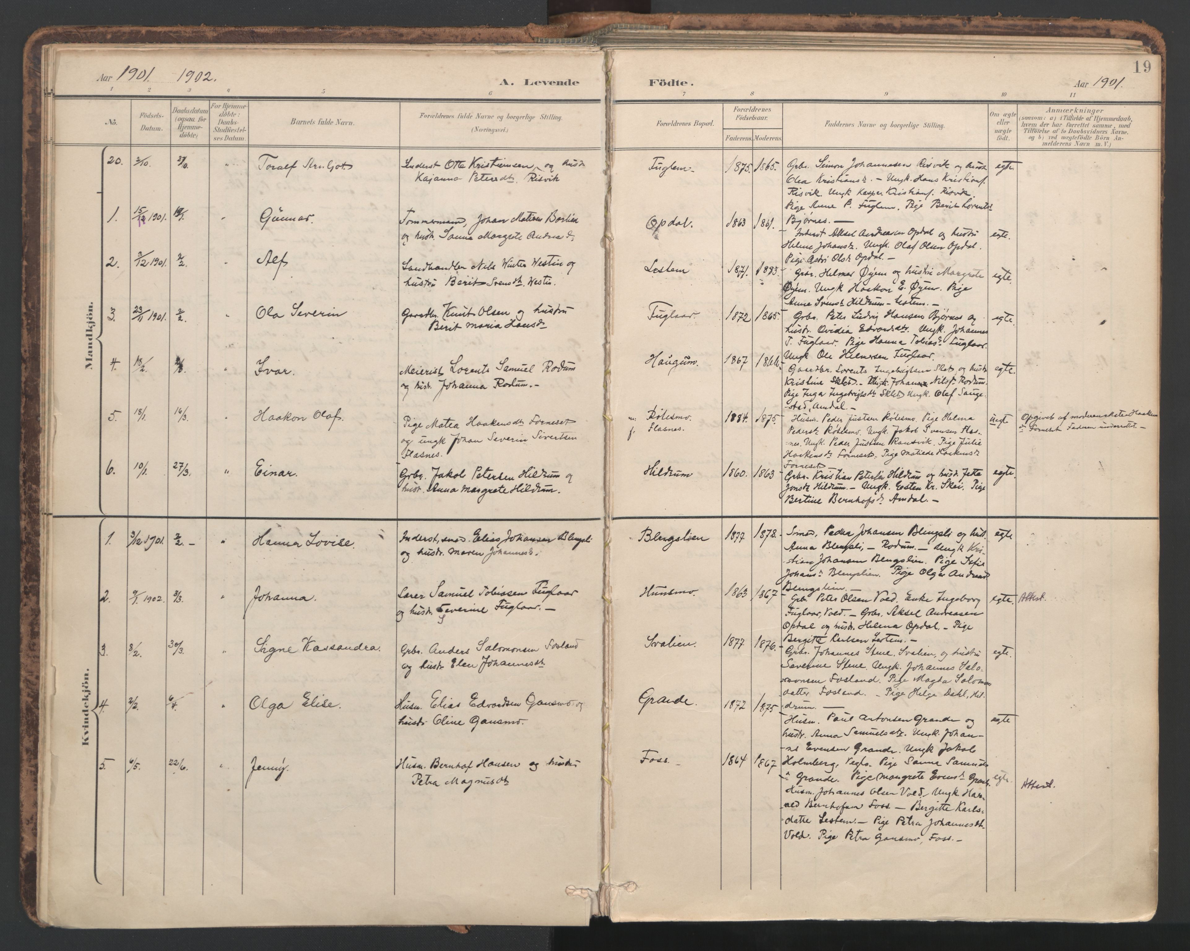 SAT, Ministerialprotokoller, klokkerbøker og fødselsregistre - Nord-Trøndelag, 764/L0556: Ministerialbok nr. 764A11, 1897-1924, s. 19