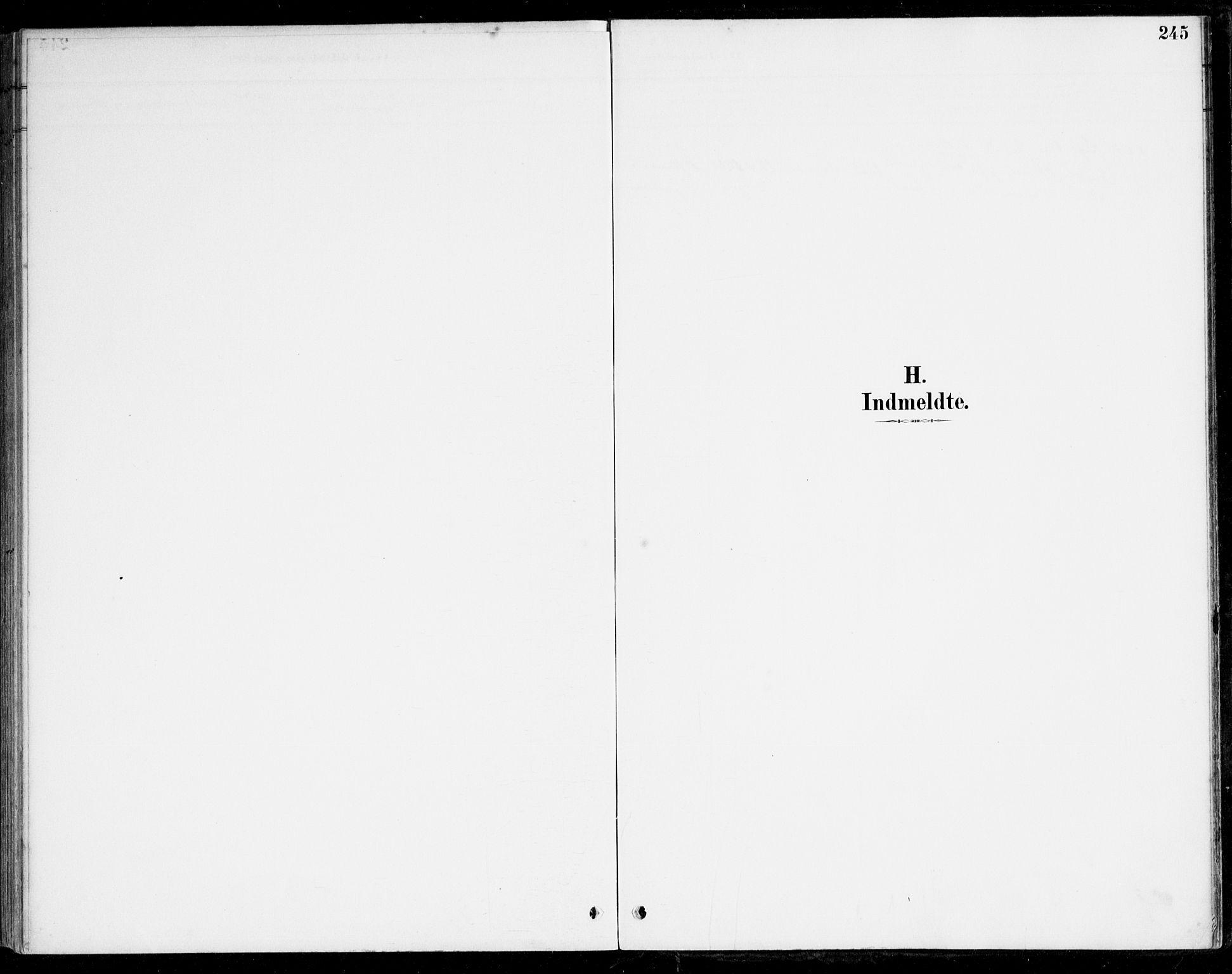 SAK, Herad sokneprestkontor, F/Fa/Fab/L0005: Ministerialbok nr. A 5, 1886-1913, s. 245