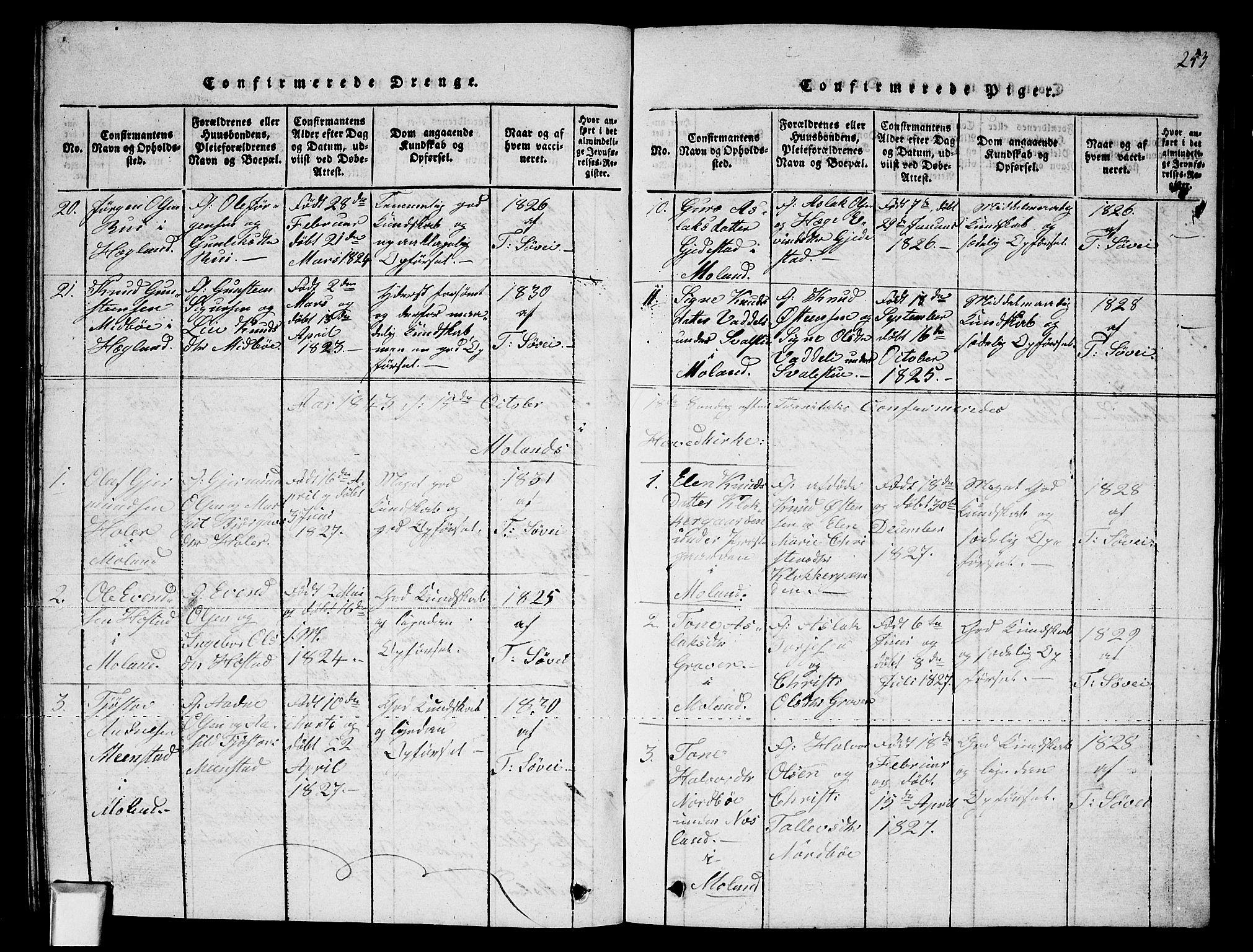 SAKO, Fyresdal kirkebøker, G/Ga/L0002: Klokkerbok nr. I 2, 1815-1857, s. 253