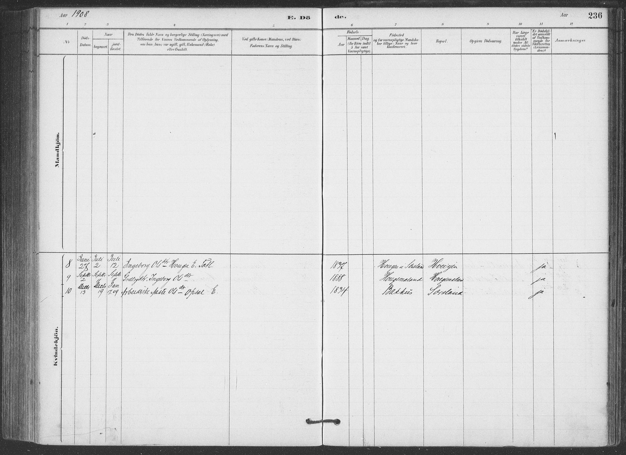 SAKO, Hjartdal kirkebøker, F/Fa/L0010: Ministerialbok nr. I 10, 1880-1929, s. 236